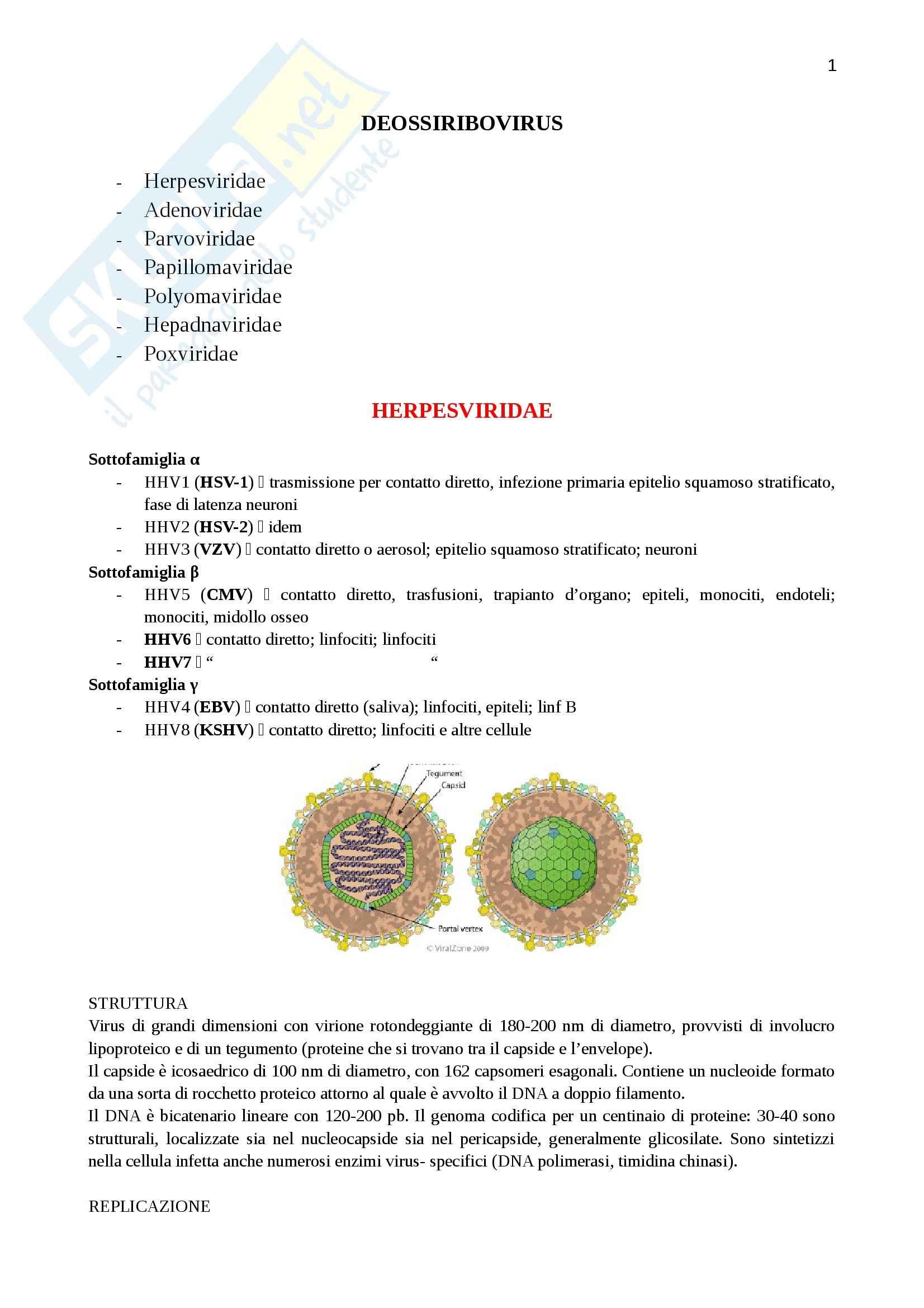 Lezioni, Virologia