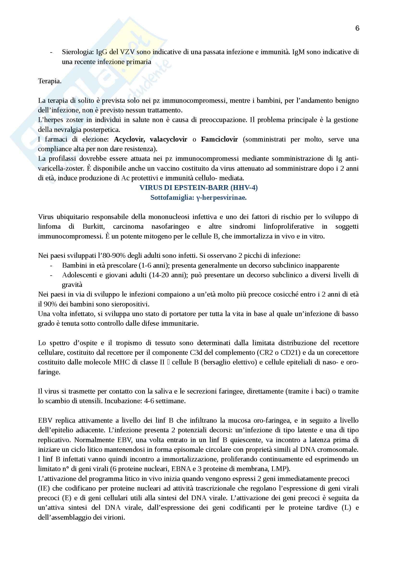 Lezioni, Virologia Pag. 6