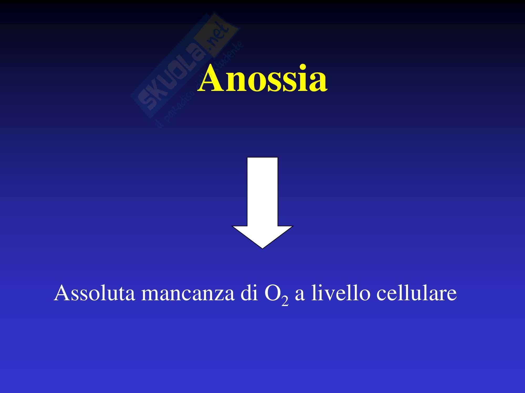 Anestesia - Ipossia Pag. 2