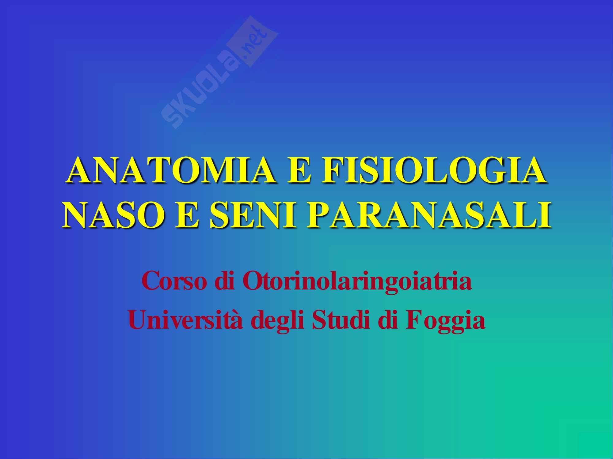 Otorinolaringoiatria - Anatomia e Fisiologia del Naso e Seni Paranasali