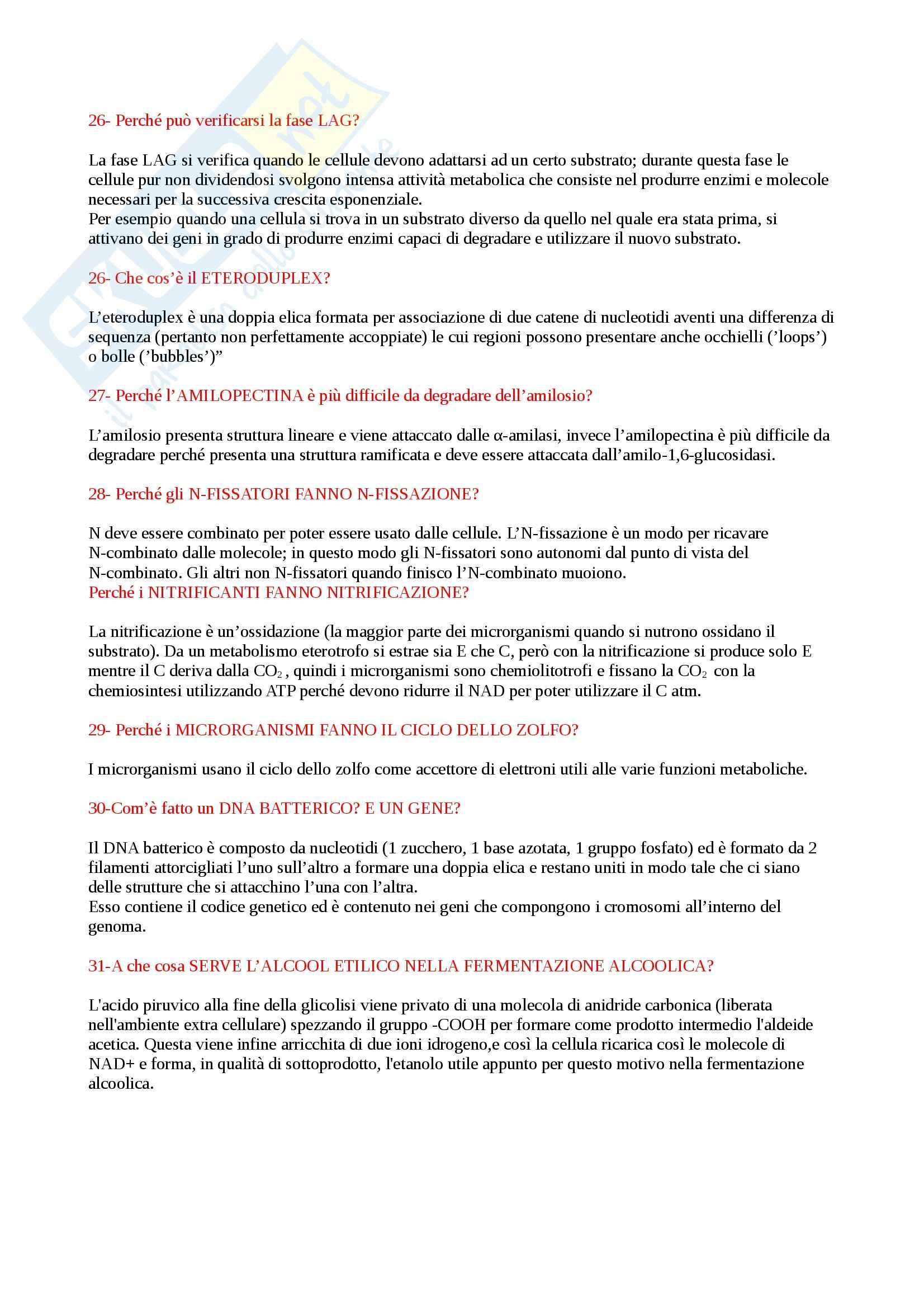 Microbiologia agraria - Domande Pag. 6