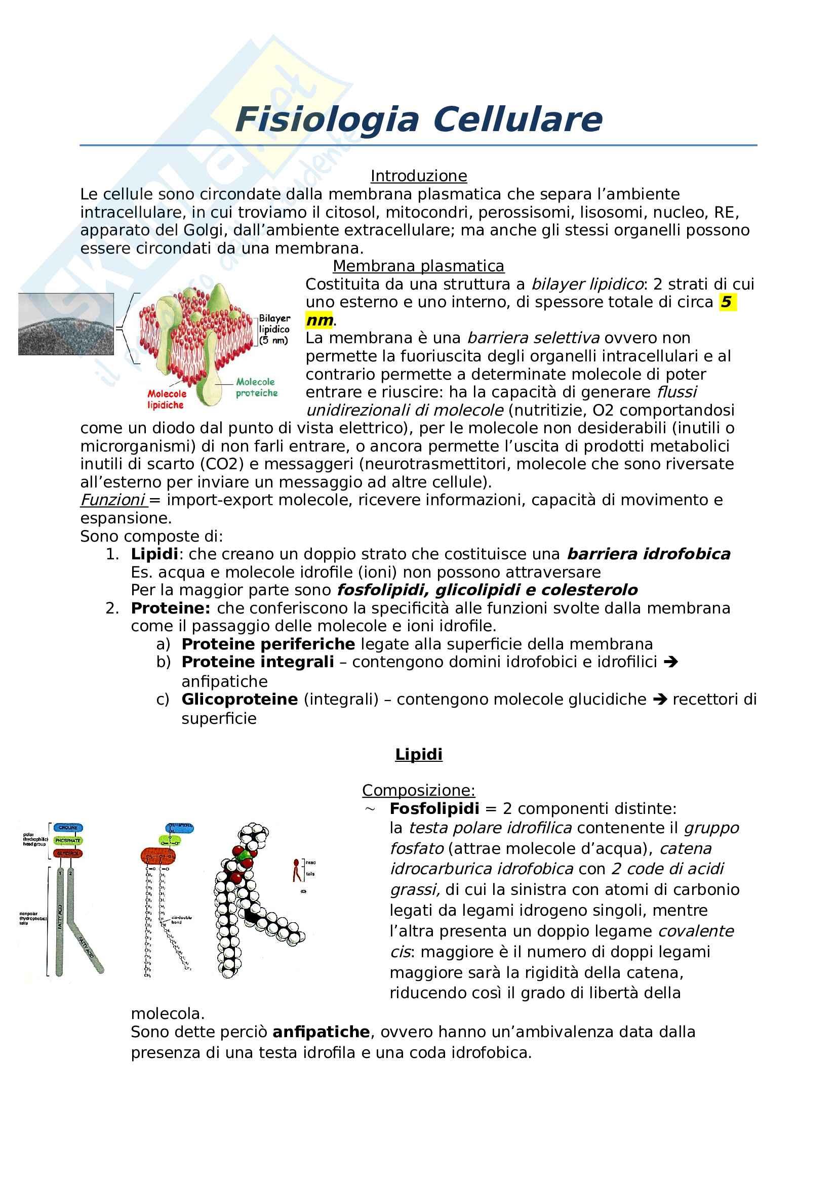 Fisiologia cellulare