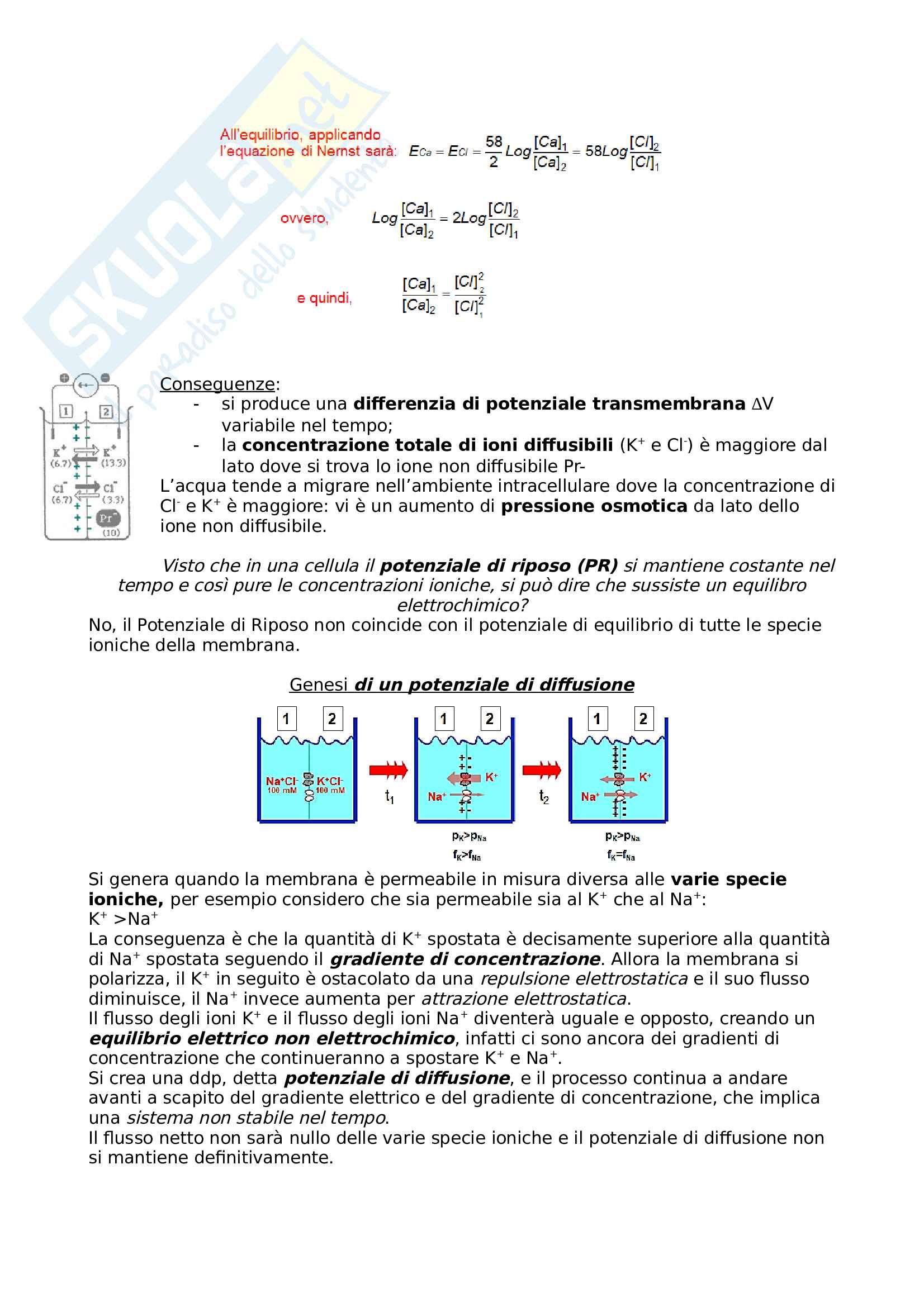 Fisiologia cellulare Pag. 21