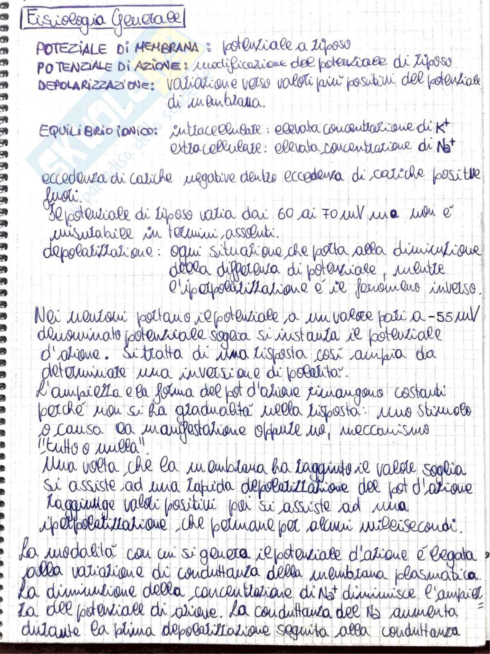 Appunti di Fisiologia umana - Prof. Tozzi