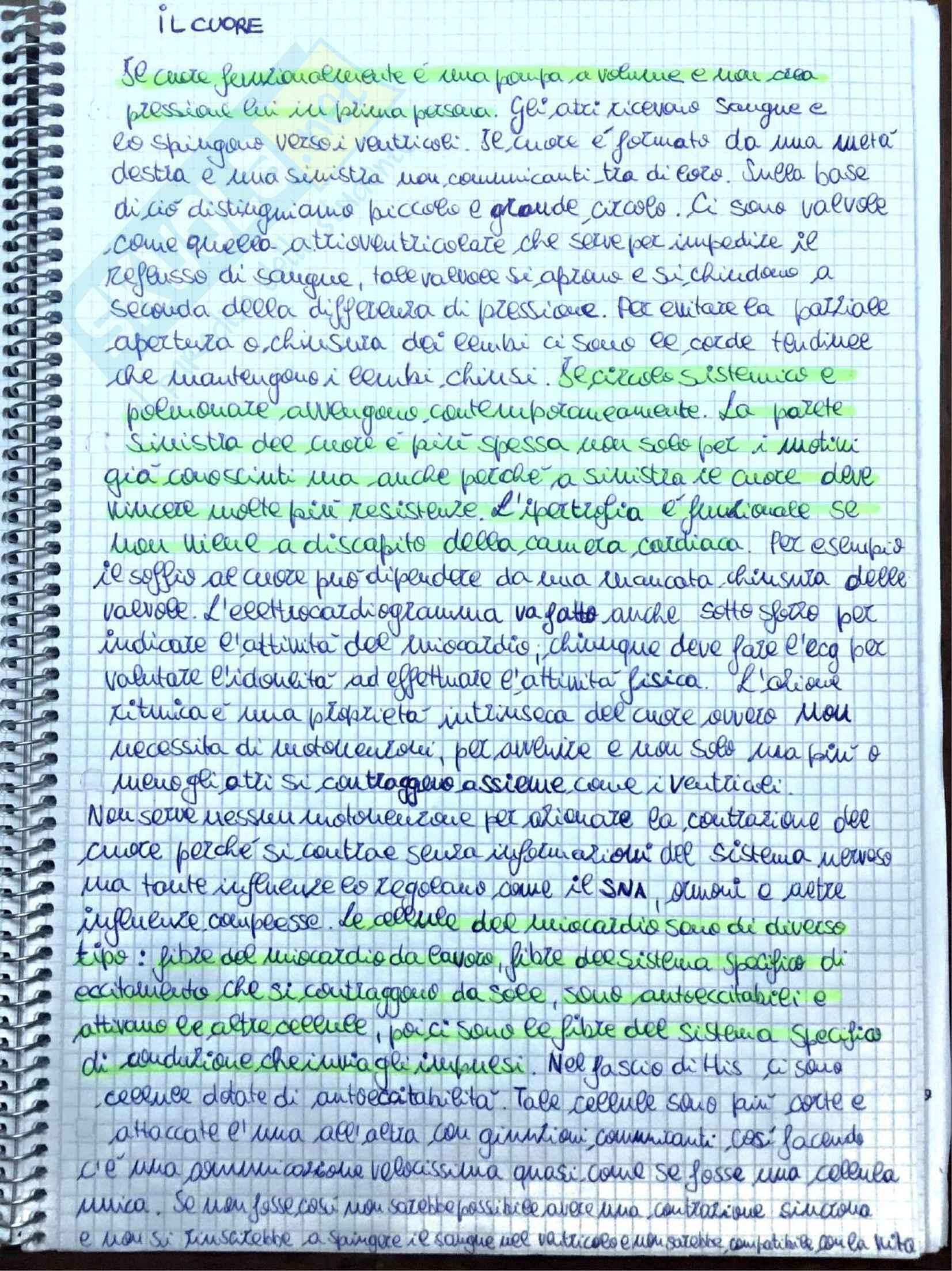 Appunti di Fisiologia umana - Prof. Tozzi Pag. 11