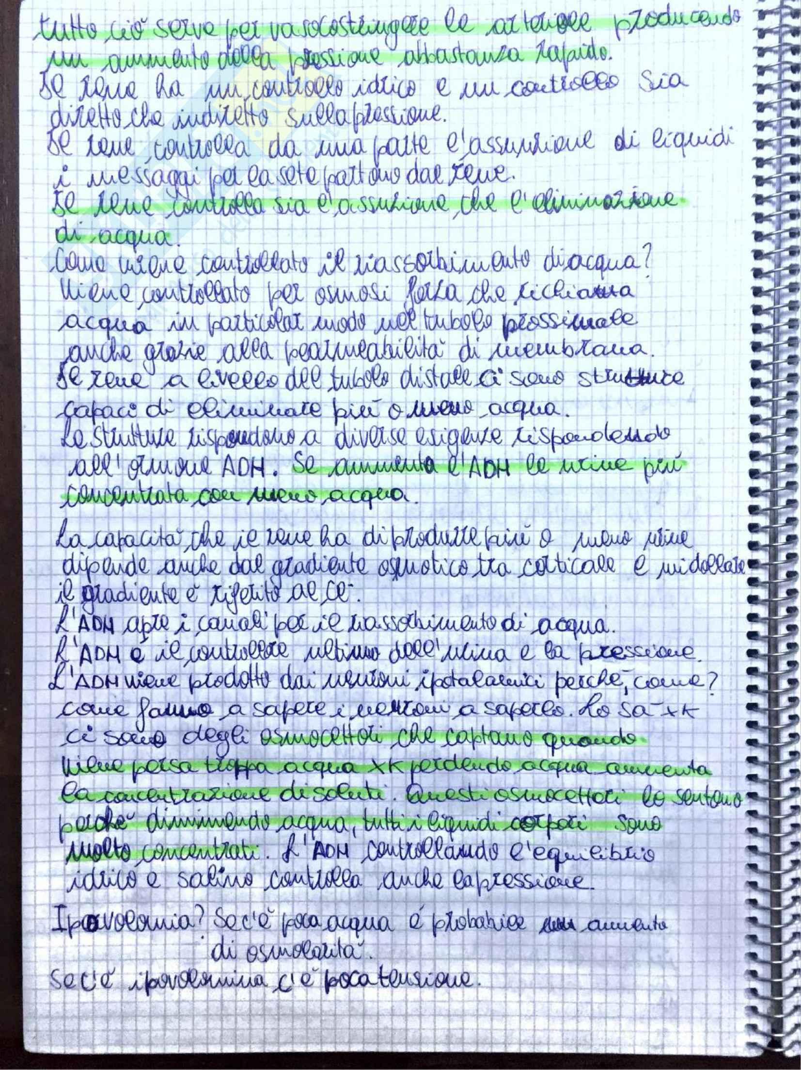 Appunti di Fisiologia umana - Prof. Tozzi Pag. 36