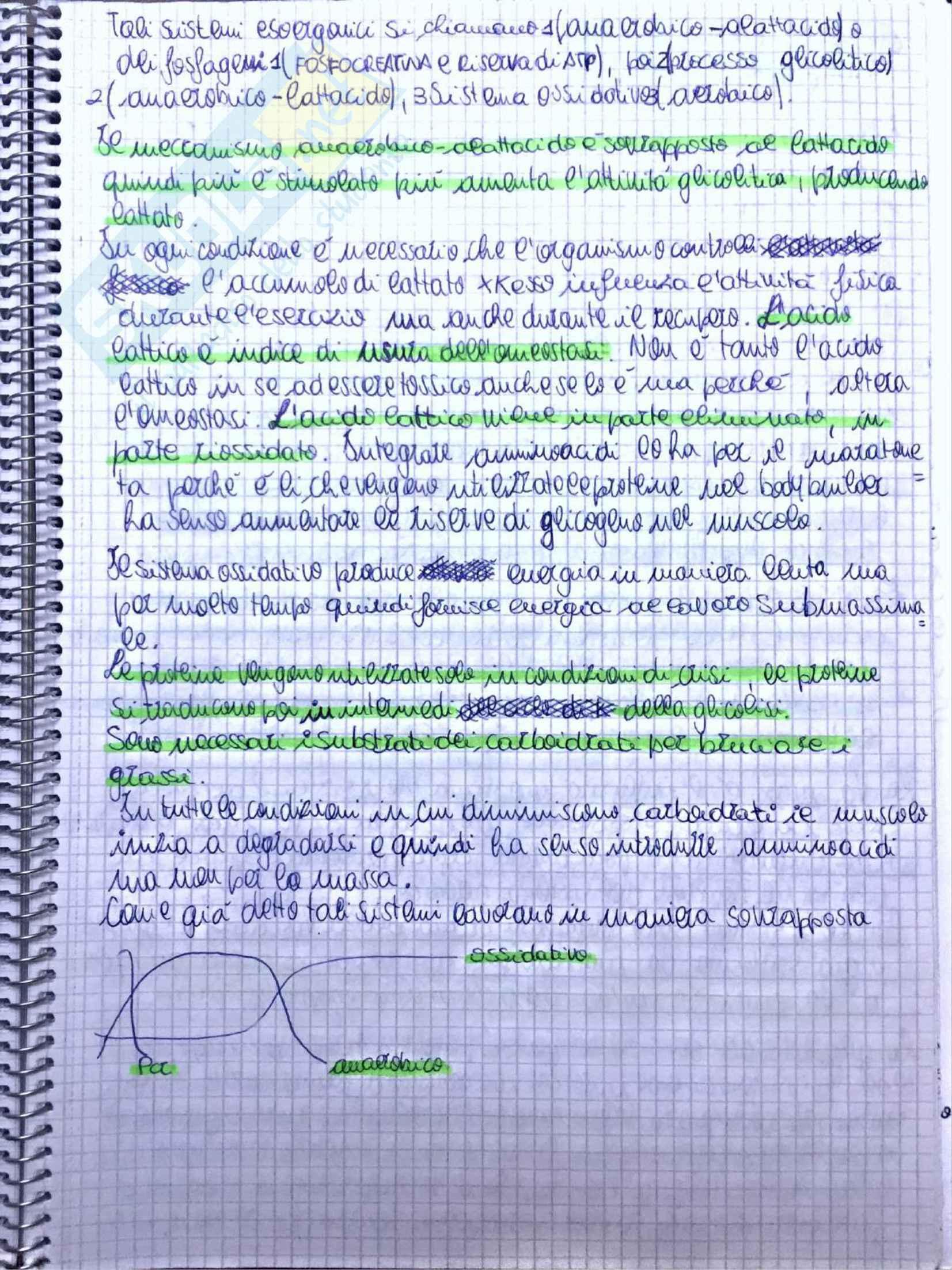 Appunti di Fisiologia umana - Prof. Tozzi Pag. 41