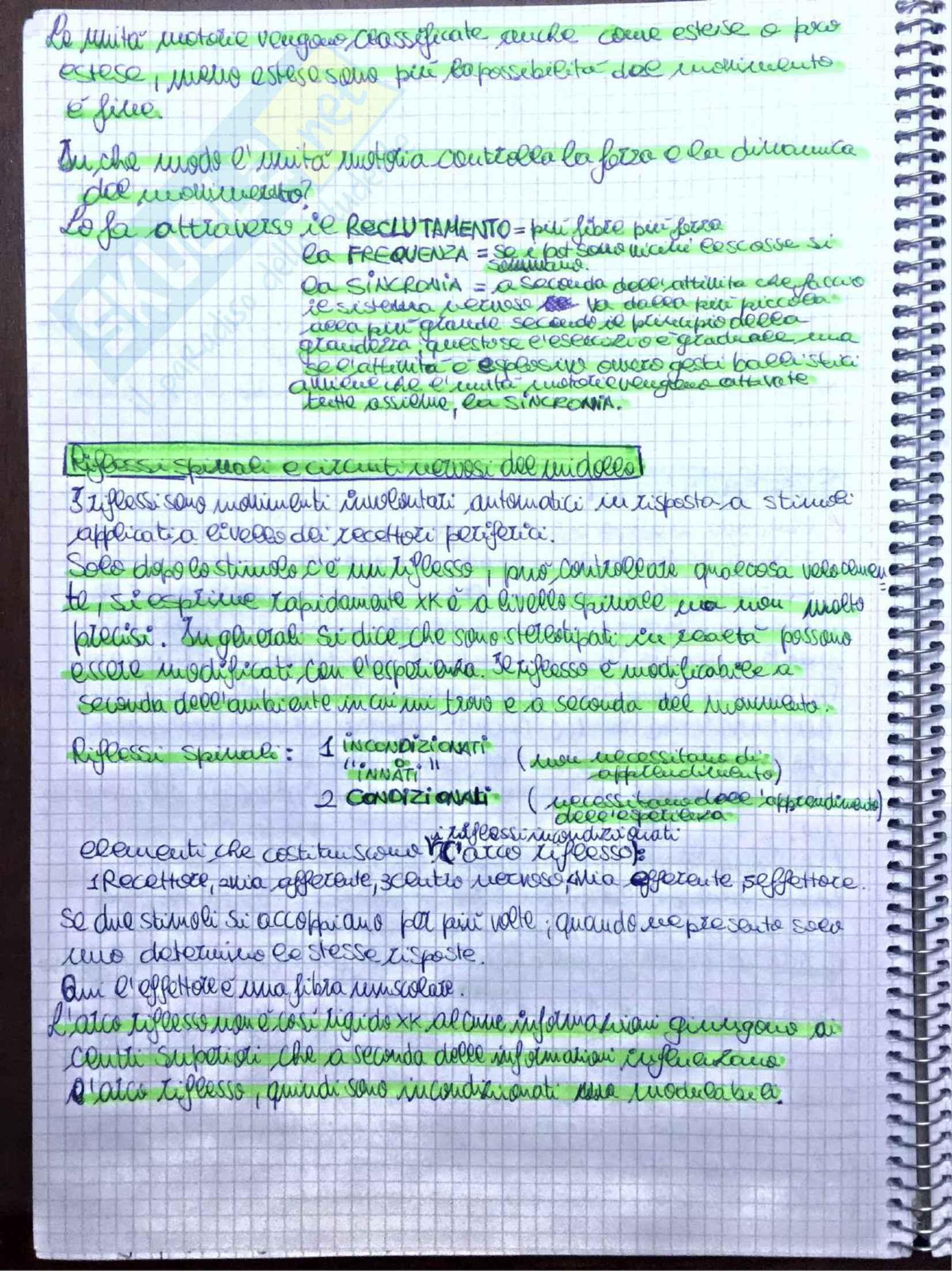 Appunti di Fisiologia umana - Prof. Tozzi Pag. 46