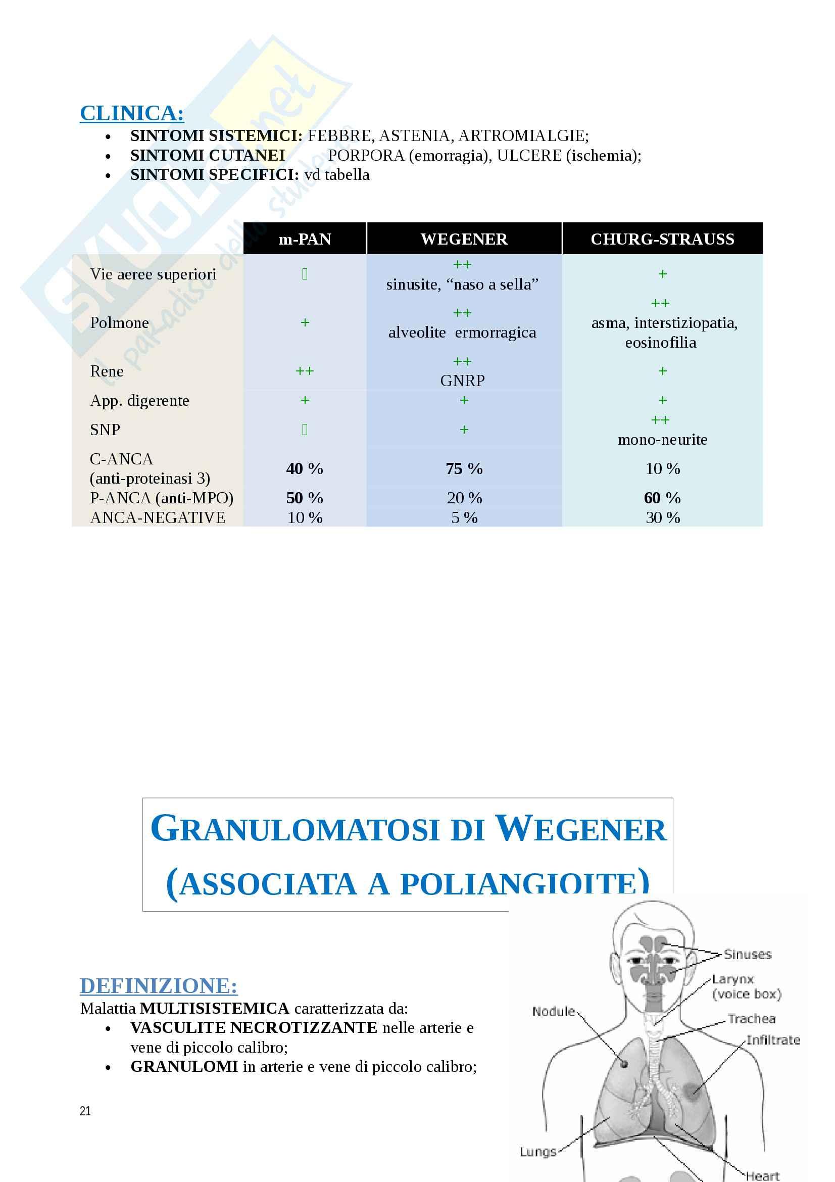 Schematizzazione delle vasculiti Pag. 21