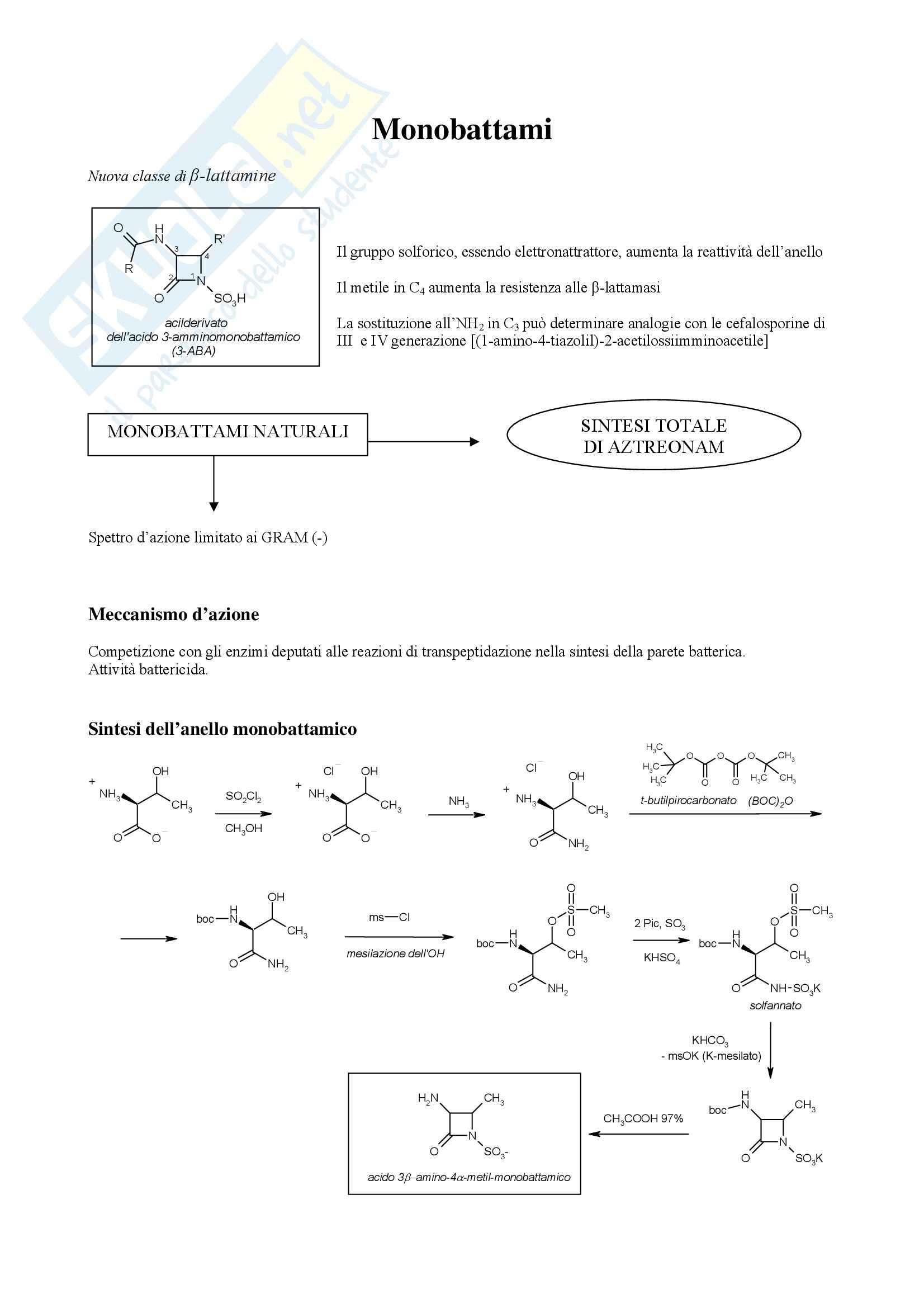 Chimica farmaceutica e tossicologica - monobattami