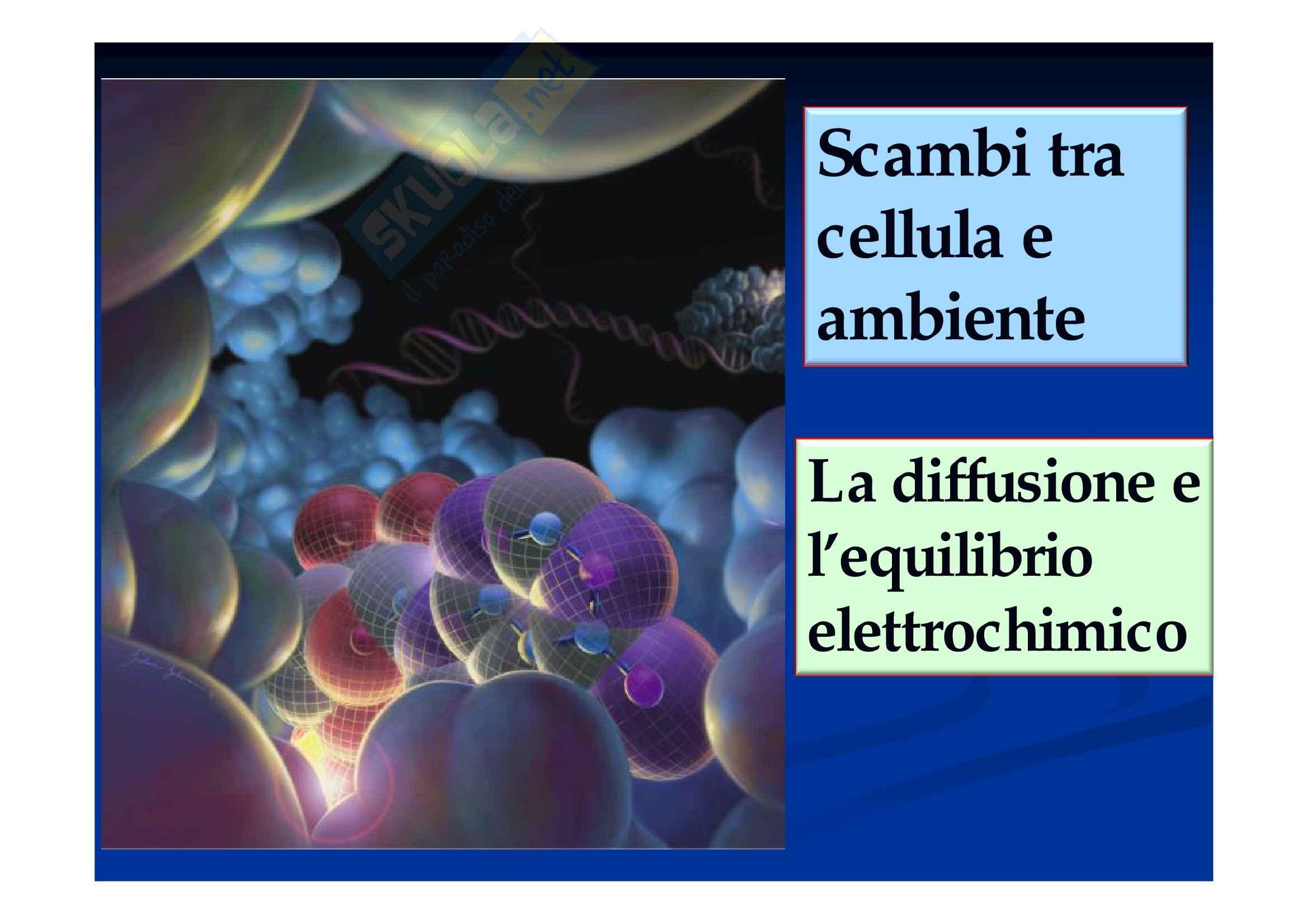 La diffusione libera, Biologia cellulare ed elementi di genetica