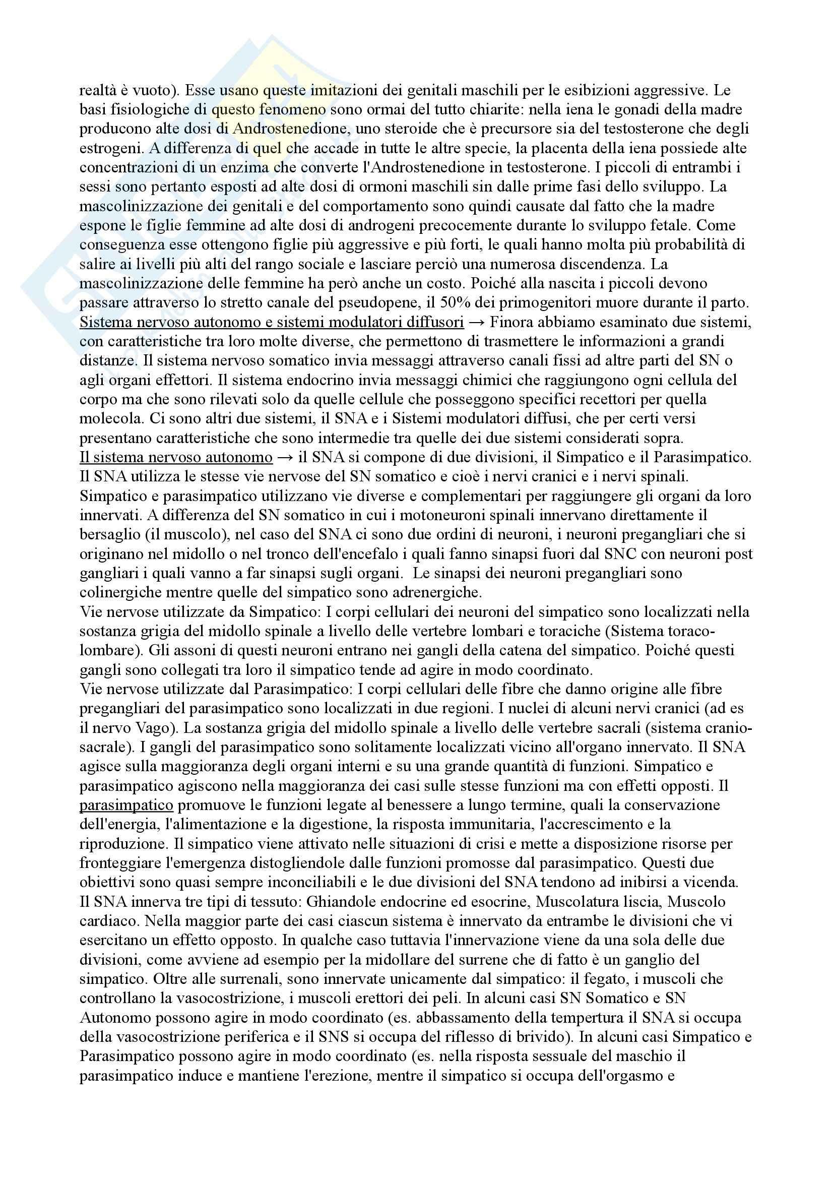 Riassunto esame Psicobiologia, prof. Bisazza Pag. 41