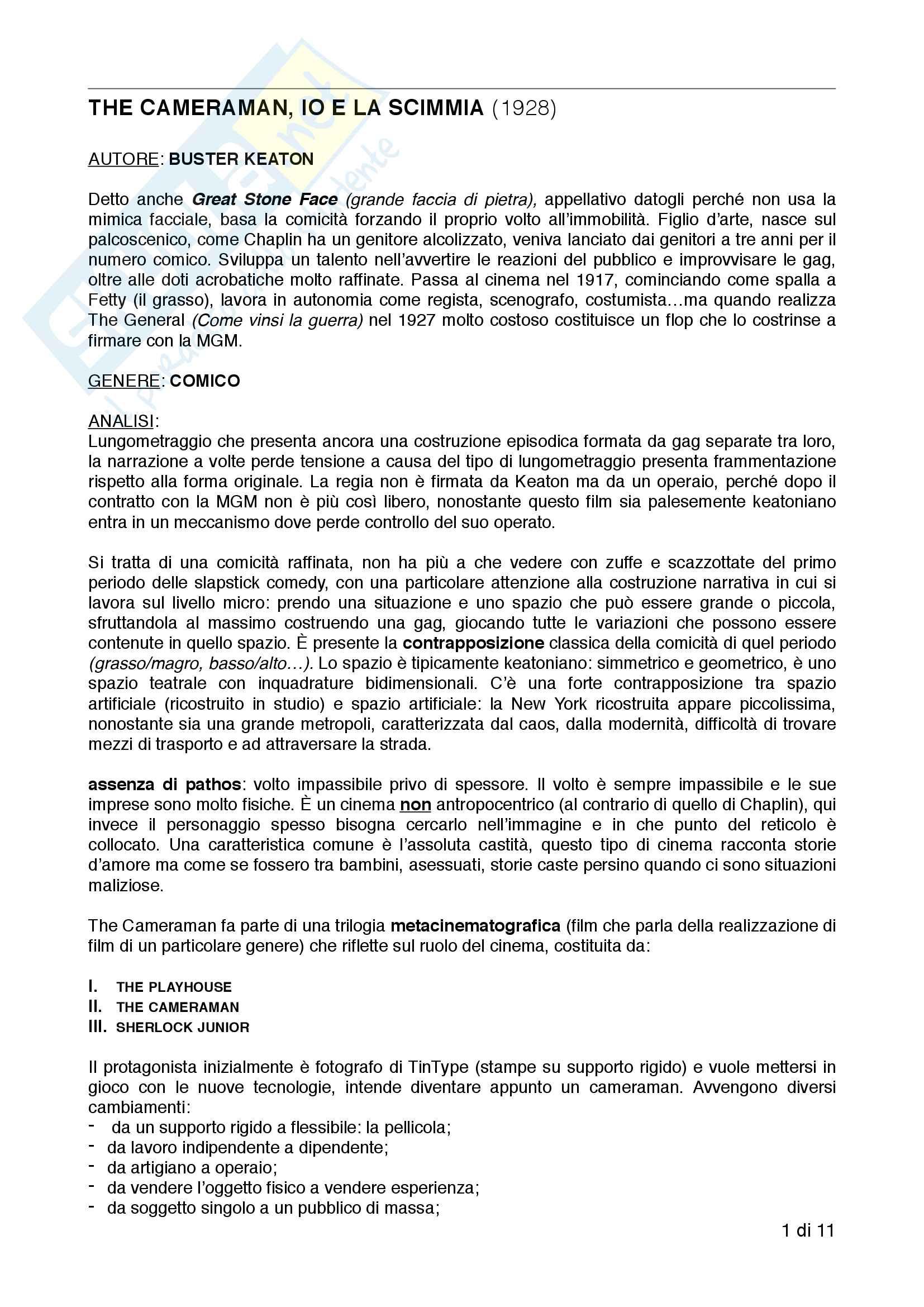 Appunti esame Storia ed estetica del cinema, prof.ssa Farinotti, Analisi Film