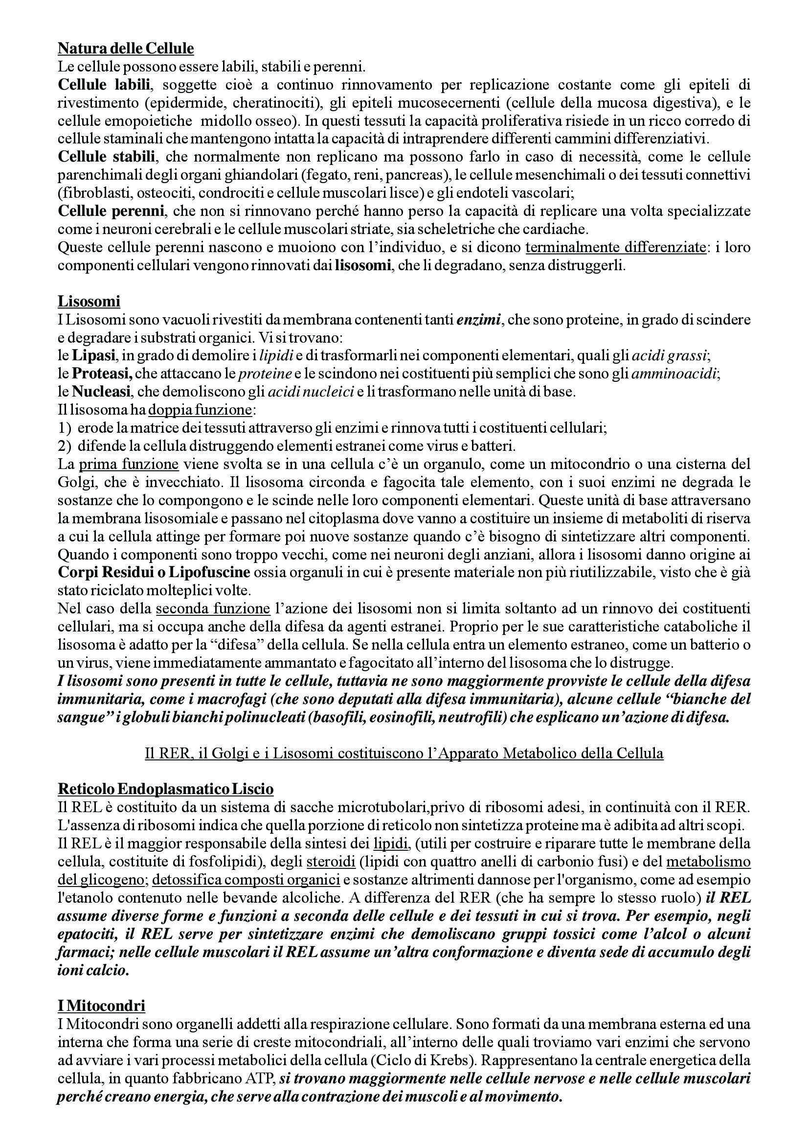 Istologia - Appunti Pag. 6