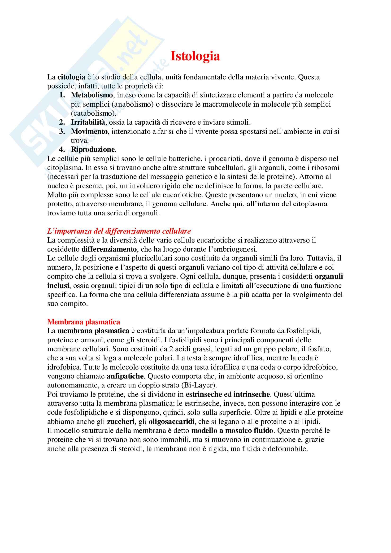 Istologia - Appunti Completi