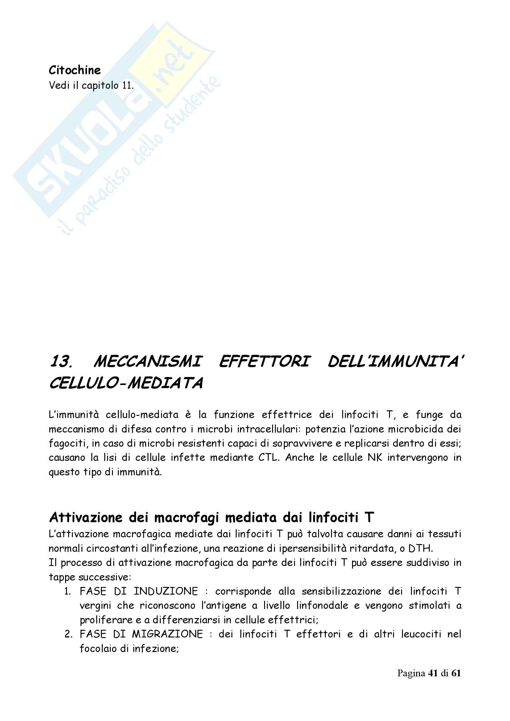 Immunologia - Appunti Pag. 41