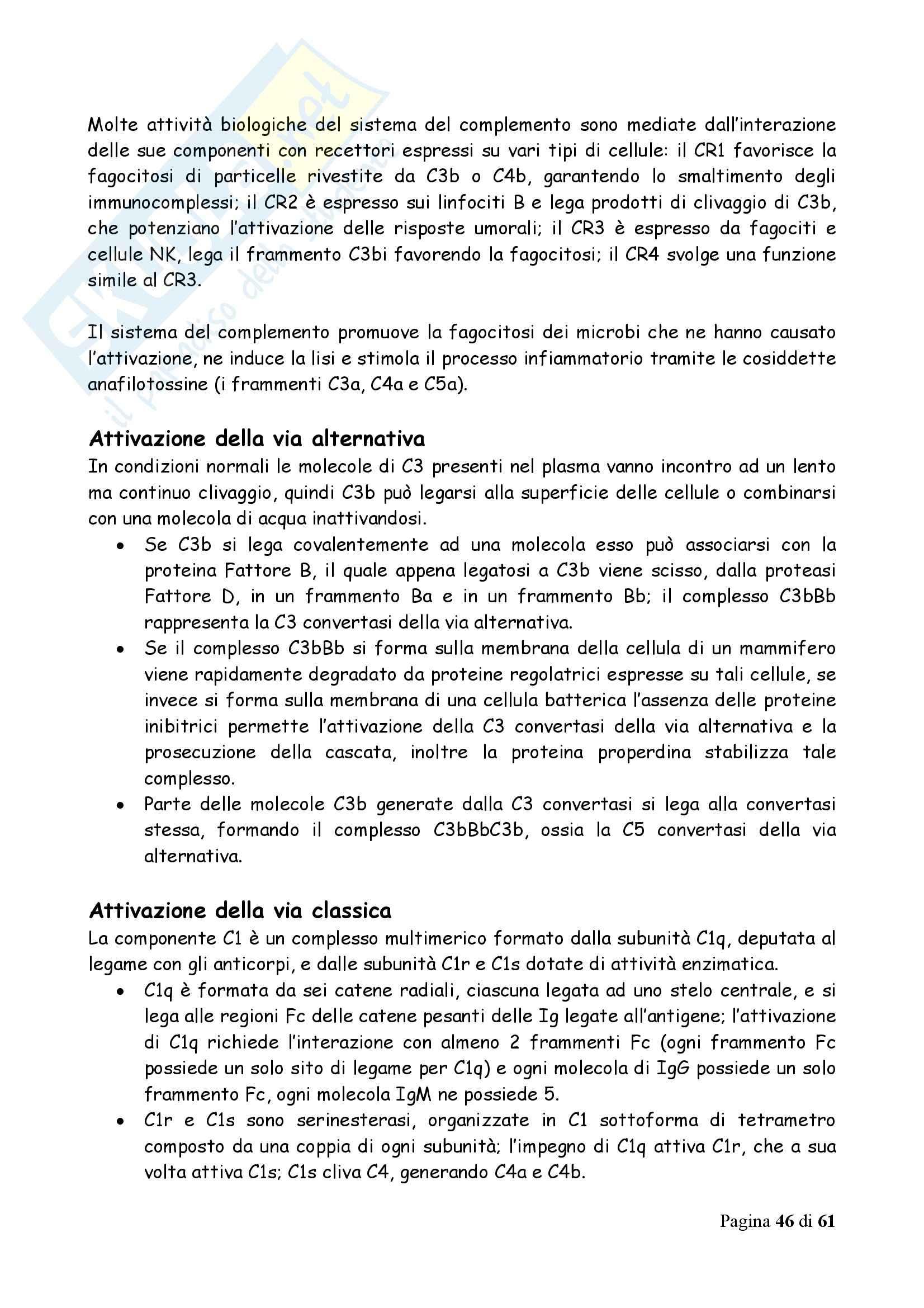 Immunologia - Appunti Pag. 46