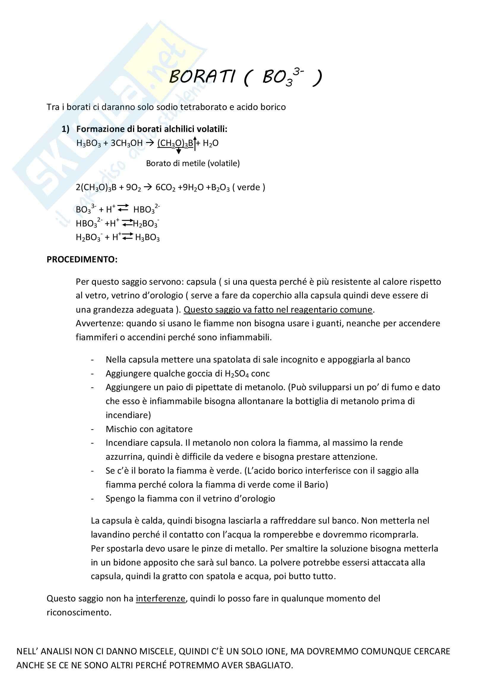 Analisi qualitativa anioni Pag. 21