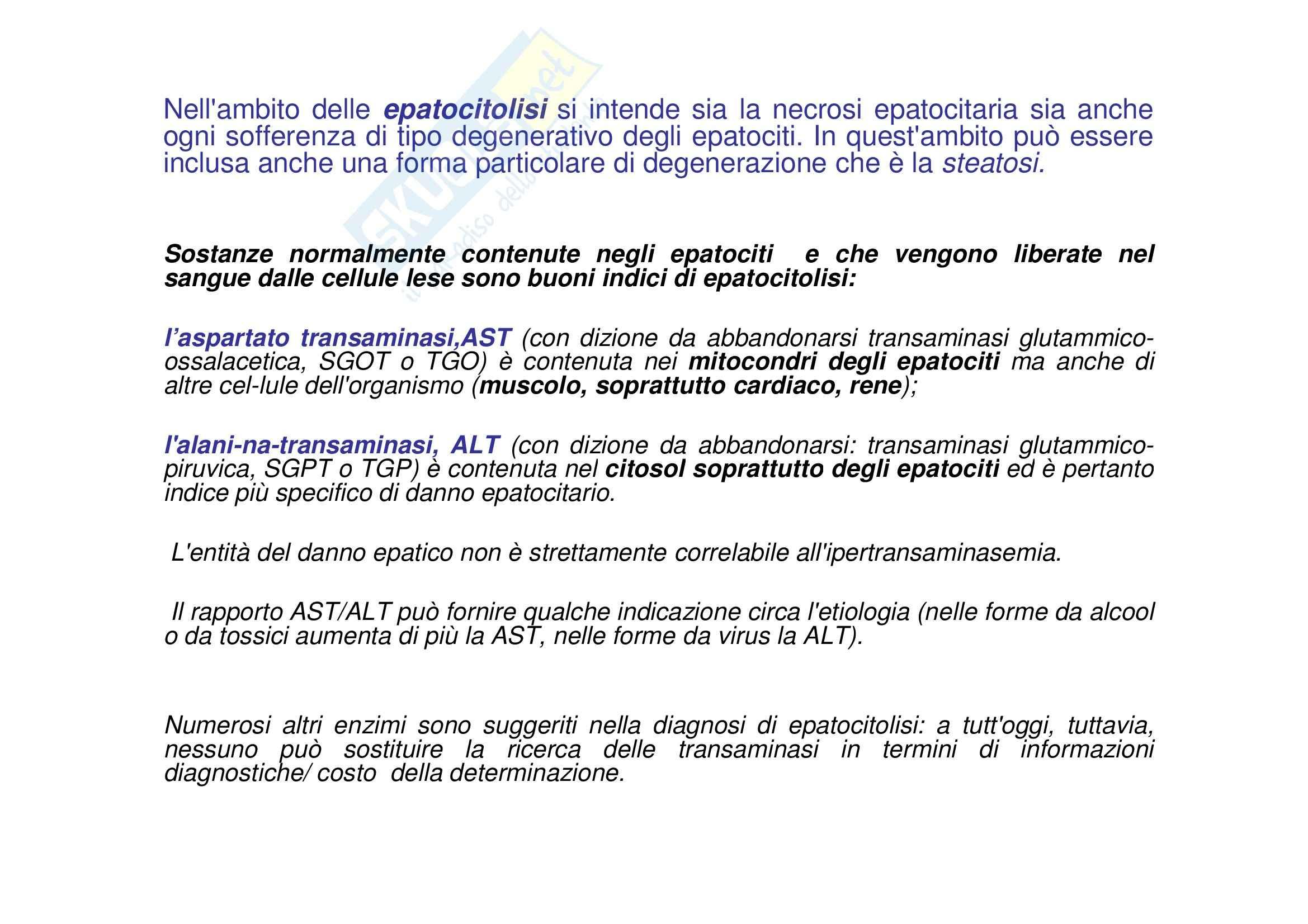 Biochimica clinica - valutazione funzionale del fegato Pag. 6