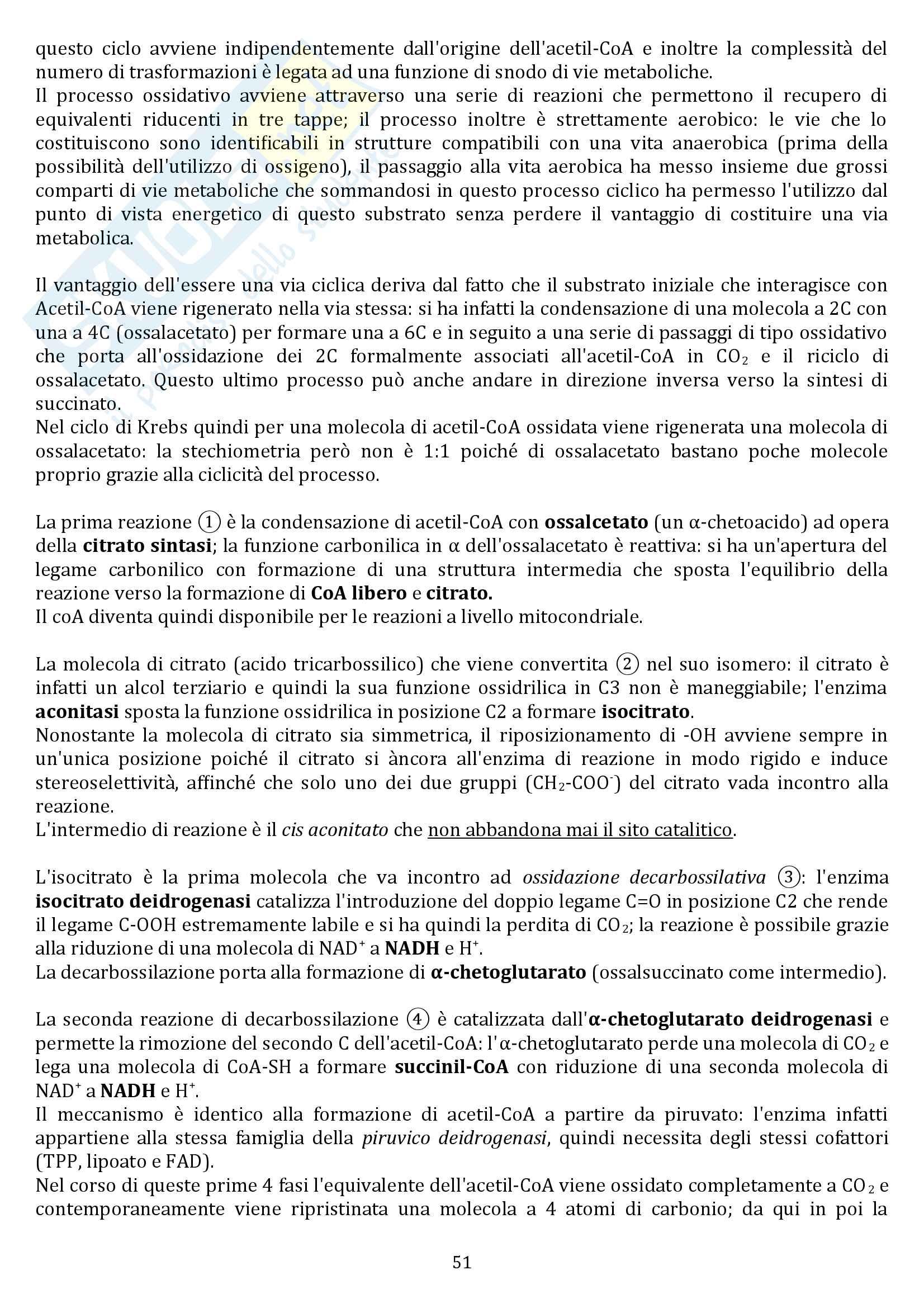 Biochimica Pag. 51