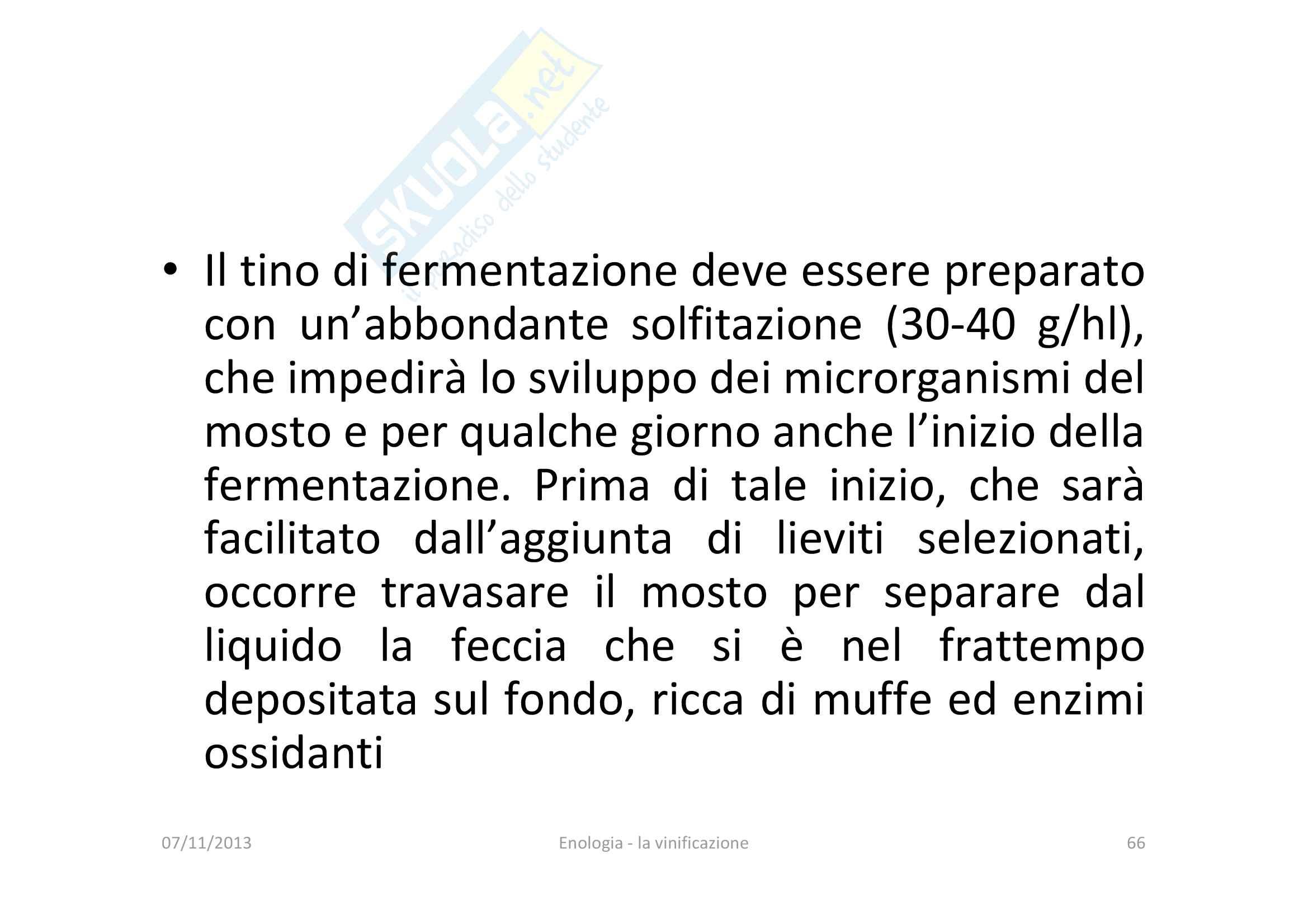 Vinificazione Pag. 66