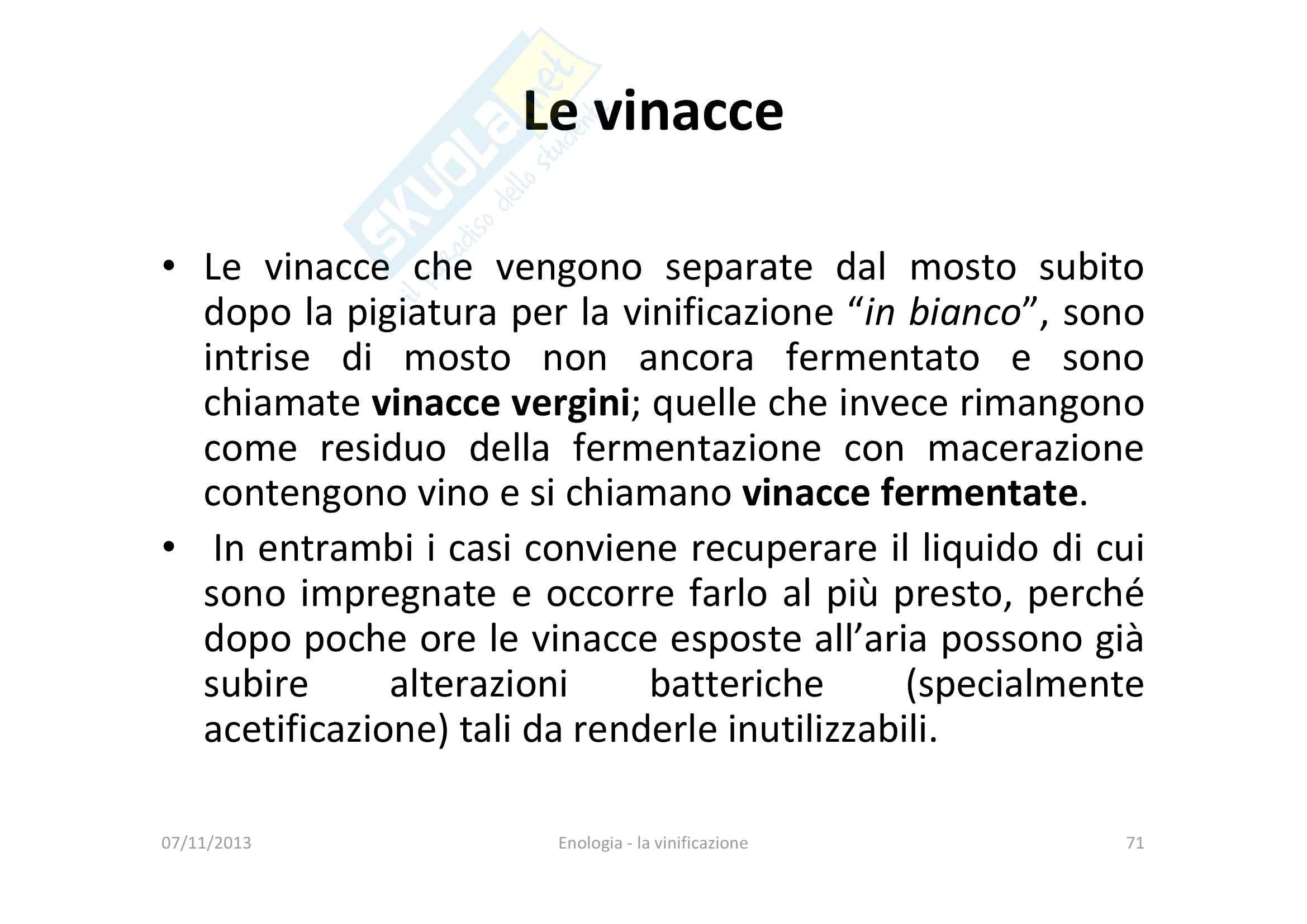 Vinificazione Pag. 71