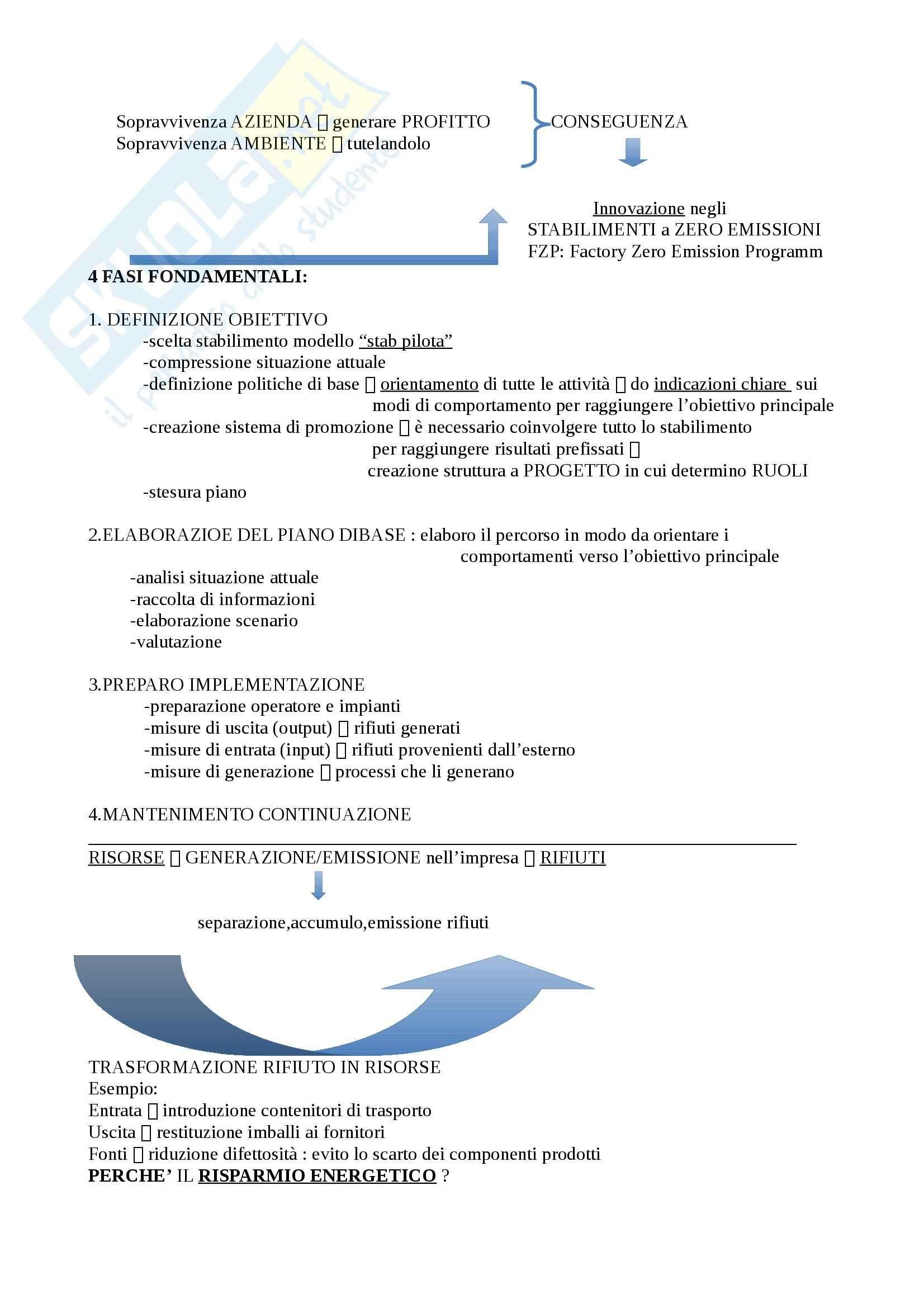 Eco-Eco managementv - Riassunto esame, prof. Cerruti Pag. 2