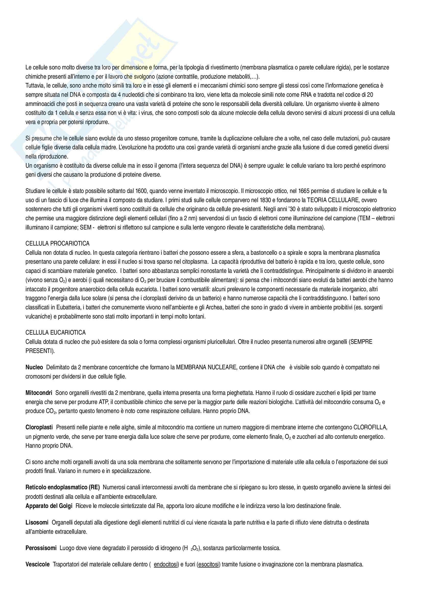 Riassunto esame Biologia, prof. Rossella, libro consigliato L'essenziale di biologia molecolare della cellula Alberts, Bray