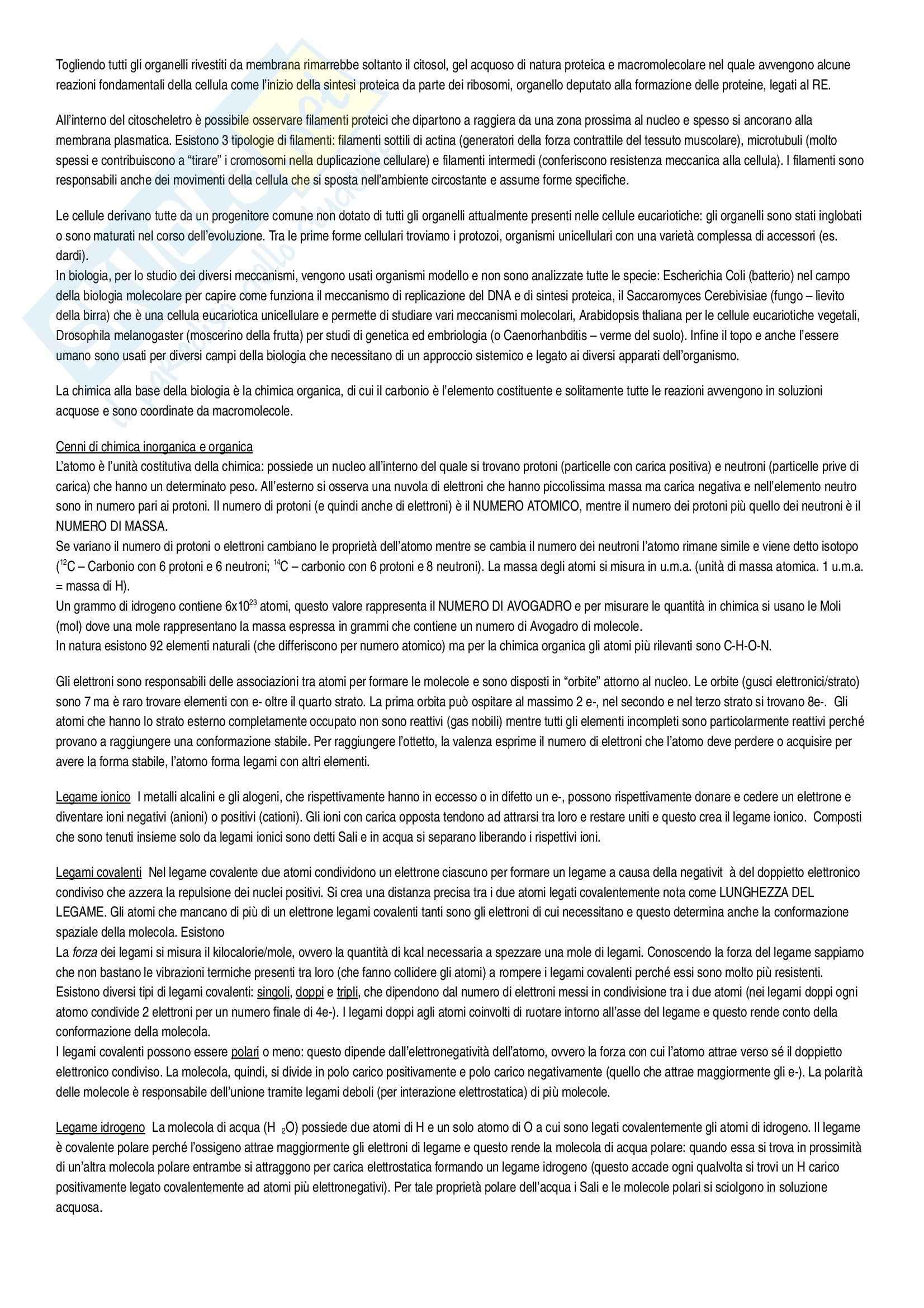 Riassunto esame Biologia, prof. Rossella, libro consigliato L'essenziale di biologia molecolare della cellula Alberts, Bray Pag. 2