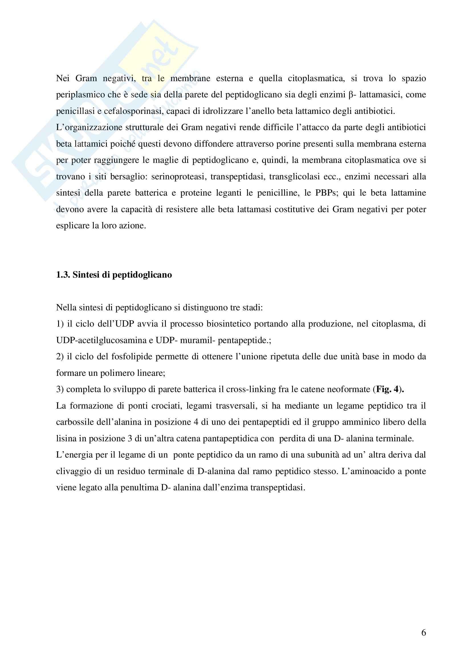 Chimica farmaceutica - penicilline Pag. 6