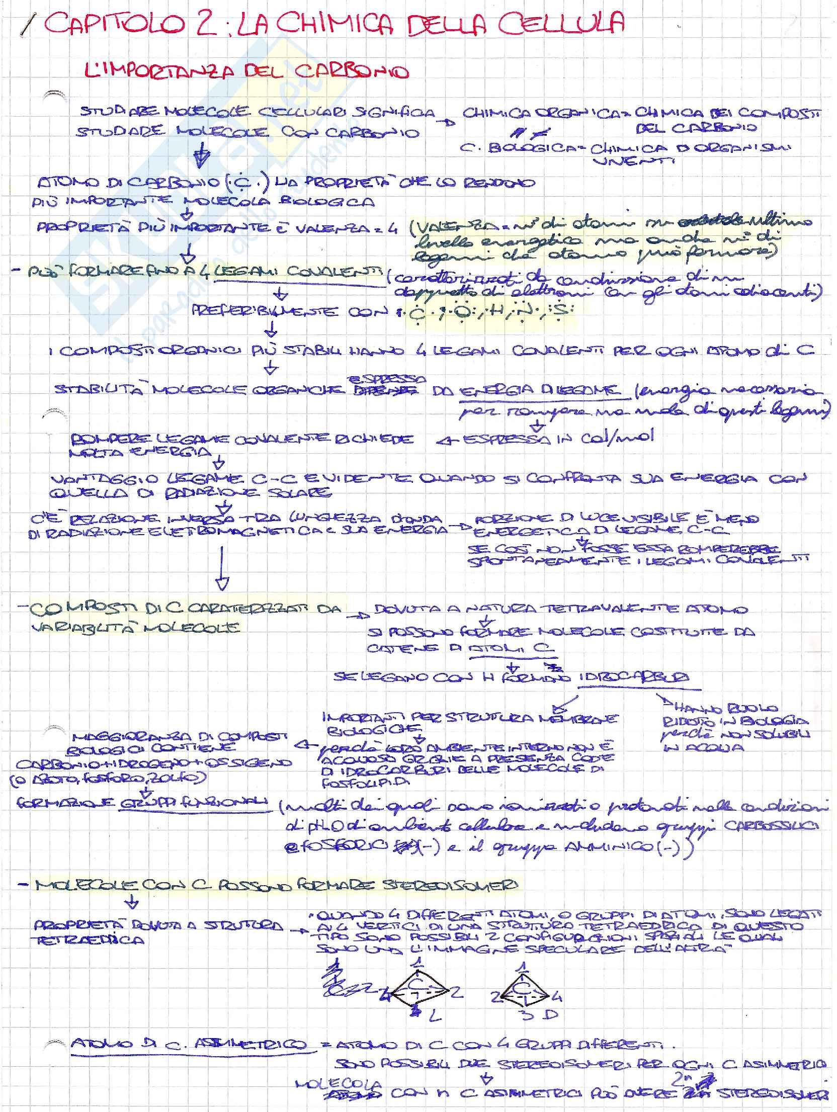 Schemi di biologia generale e cellulare per l'esame della prof. Patrizia Limonta sulla chimica della cellula