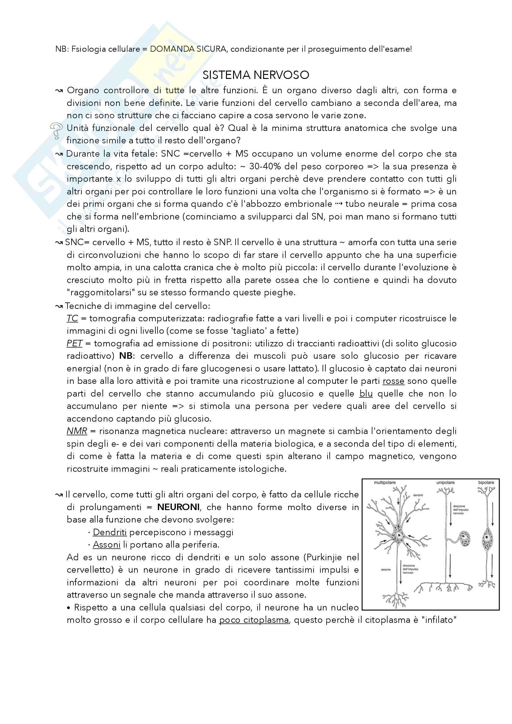 Fisiologia degli organi e dei sistemi, parte 2