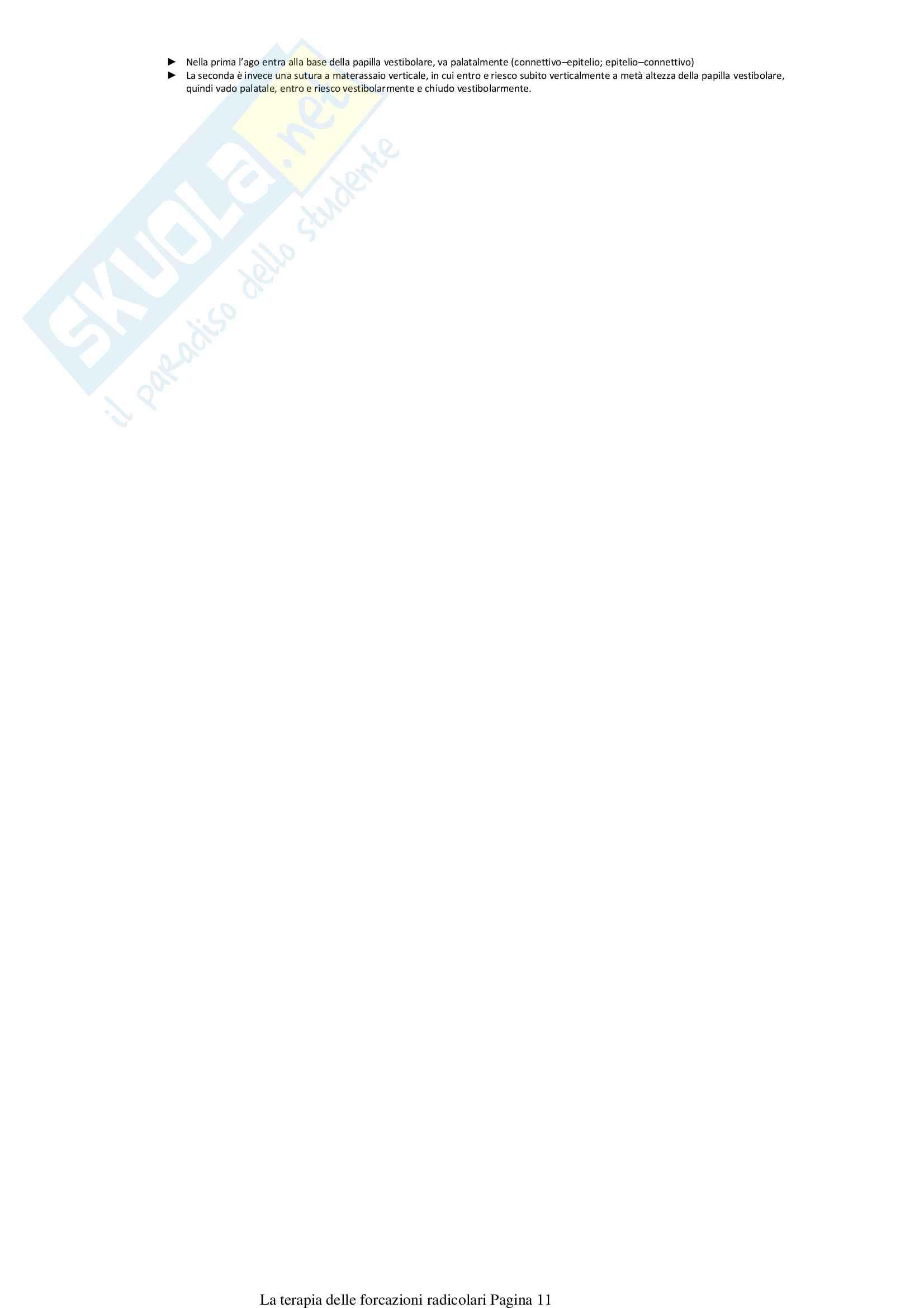 La terapia delle forcazioni radicolari Pag. 11