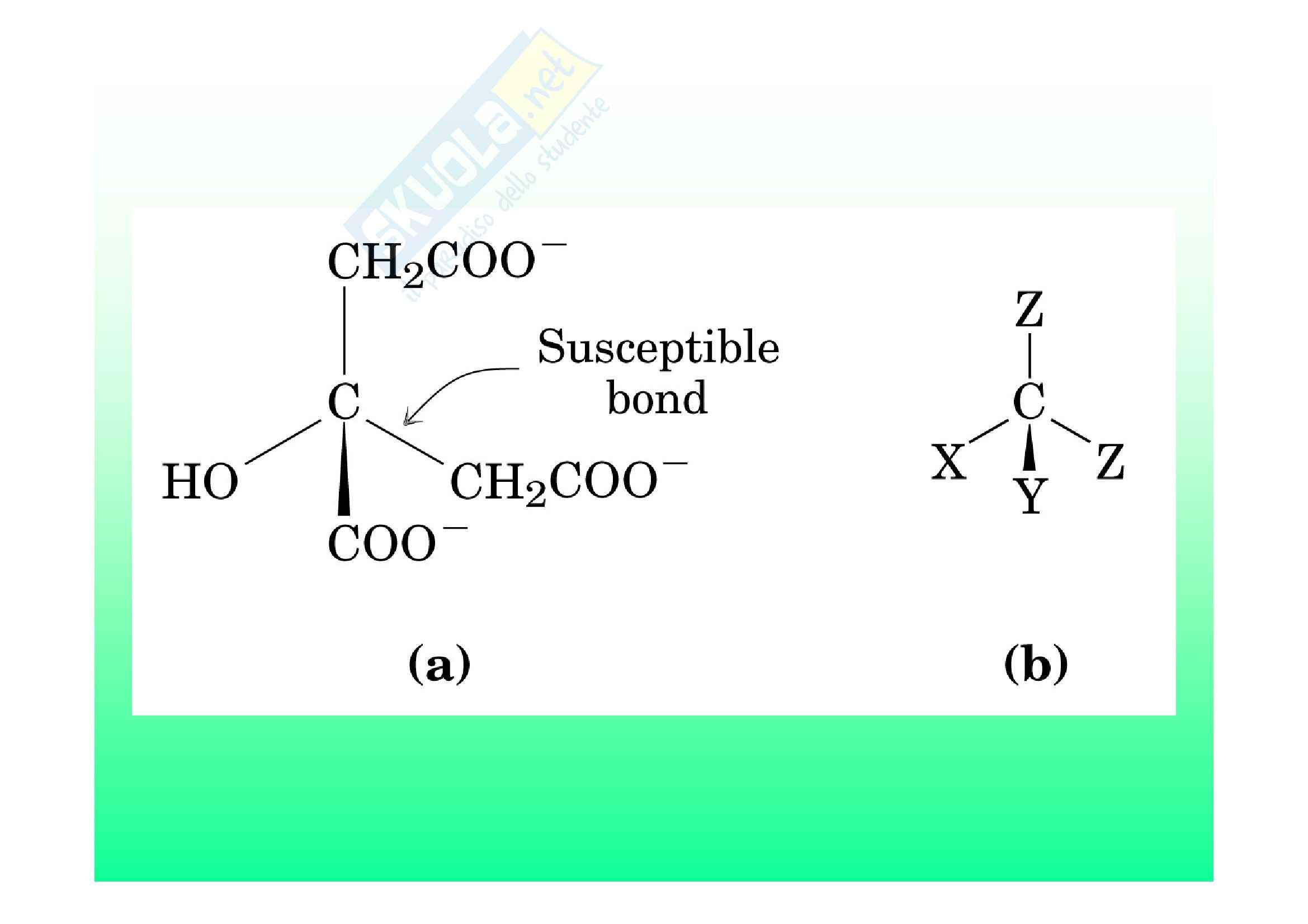 Biochimica II – Lezione 6 – Slides Pag. 46