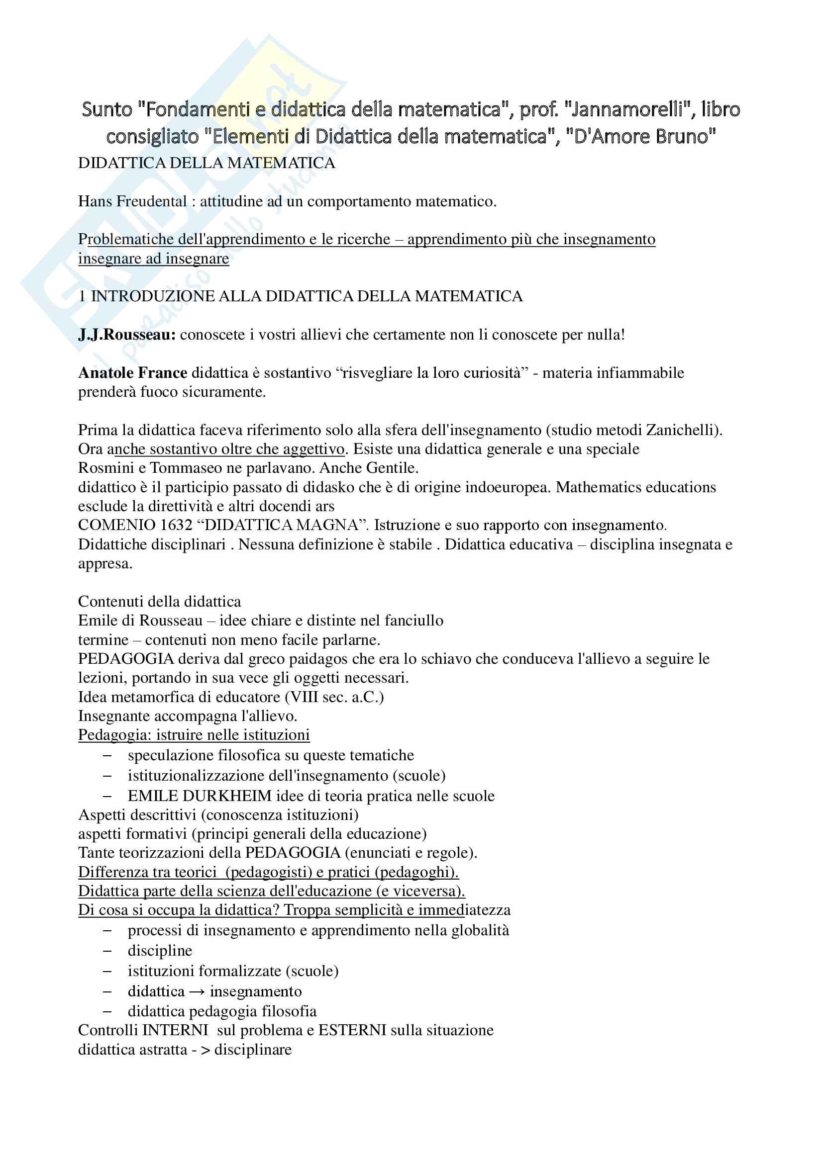 Sunto Fondamenti e didattica della matematica, prof. Jannamorelli, libro consigliato Elementi di Didattica della matematica, D'Amore Bruno
