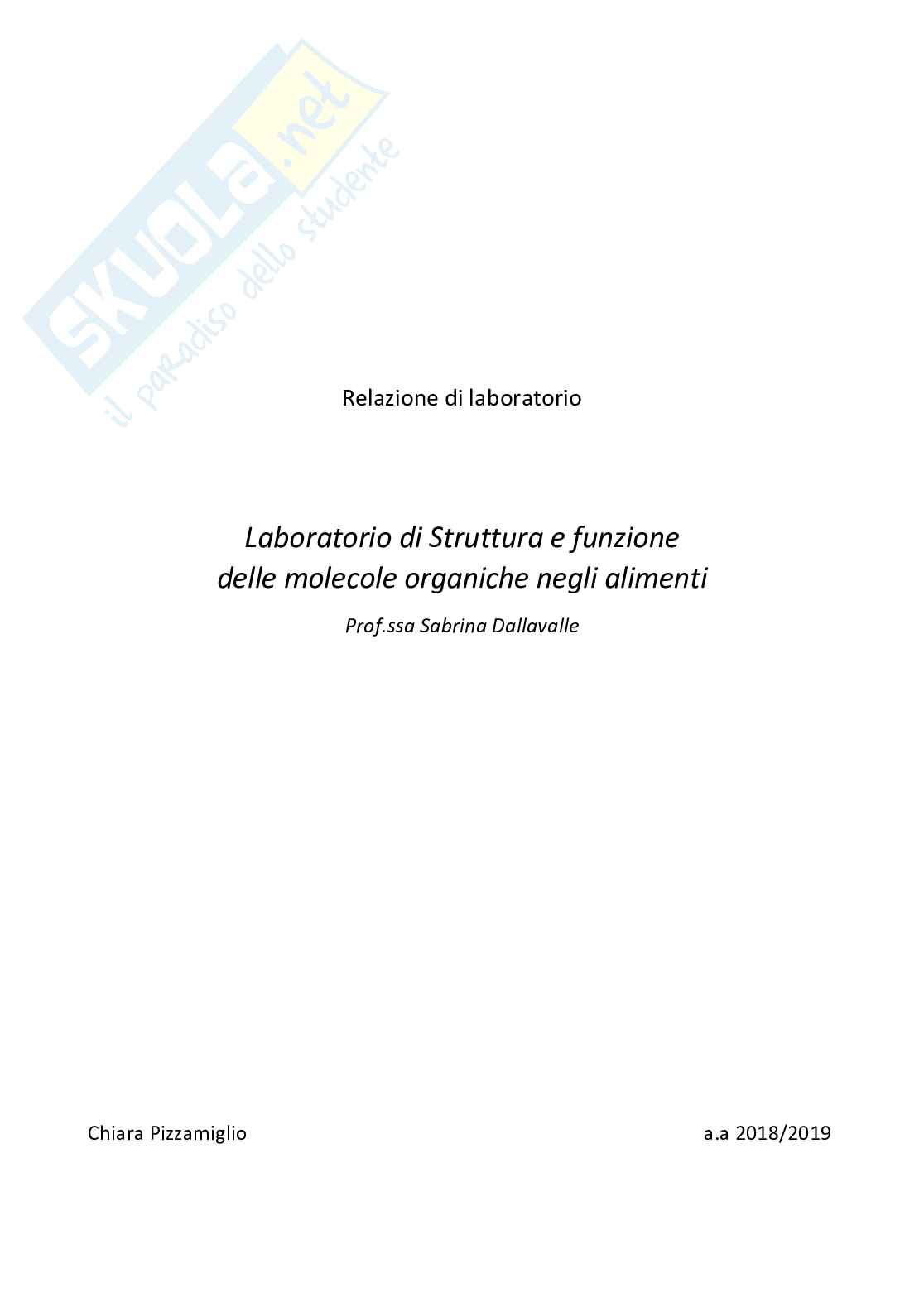 Relazione Laboratorio Strutture