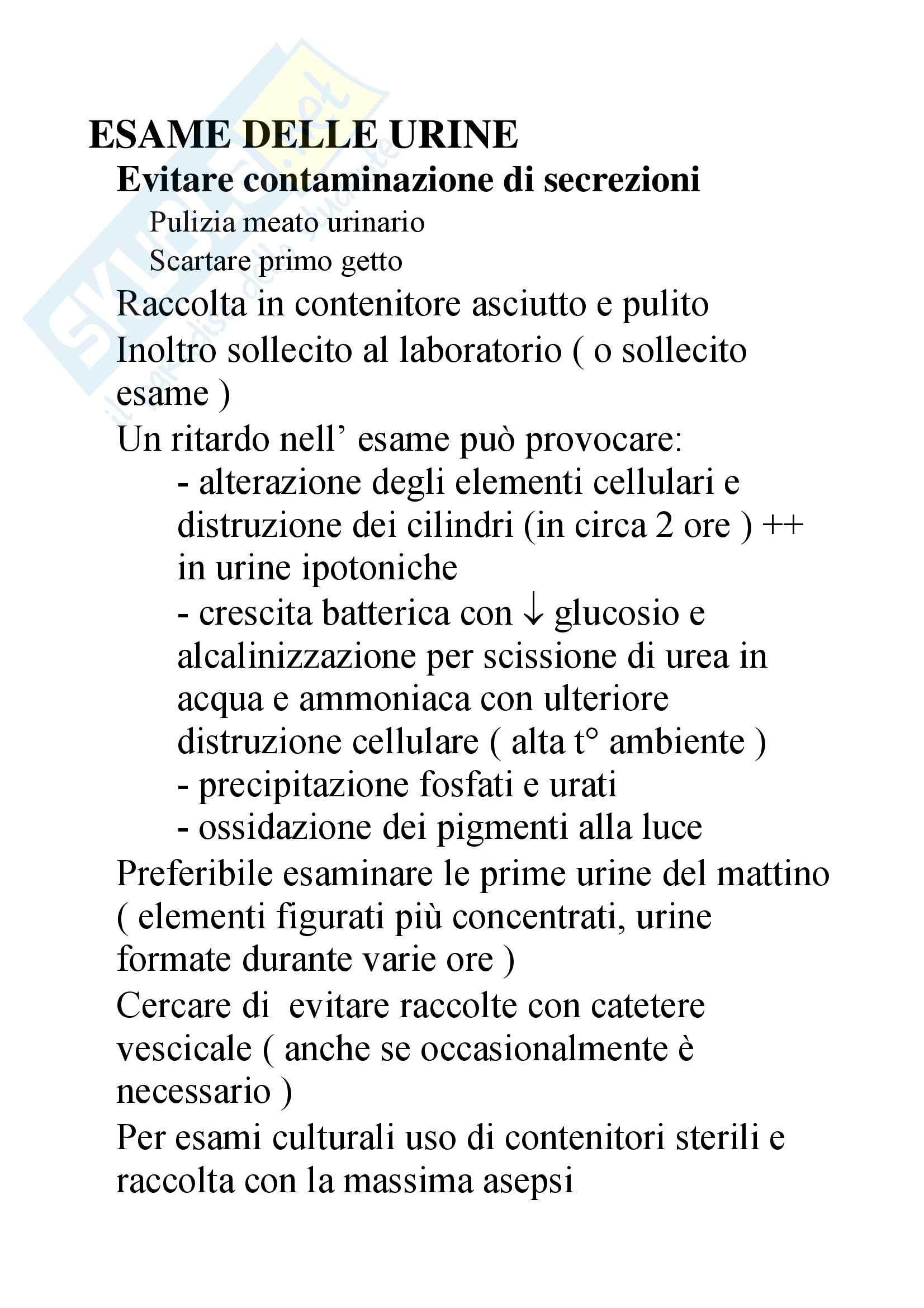 Patologia Clinica – Urine