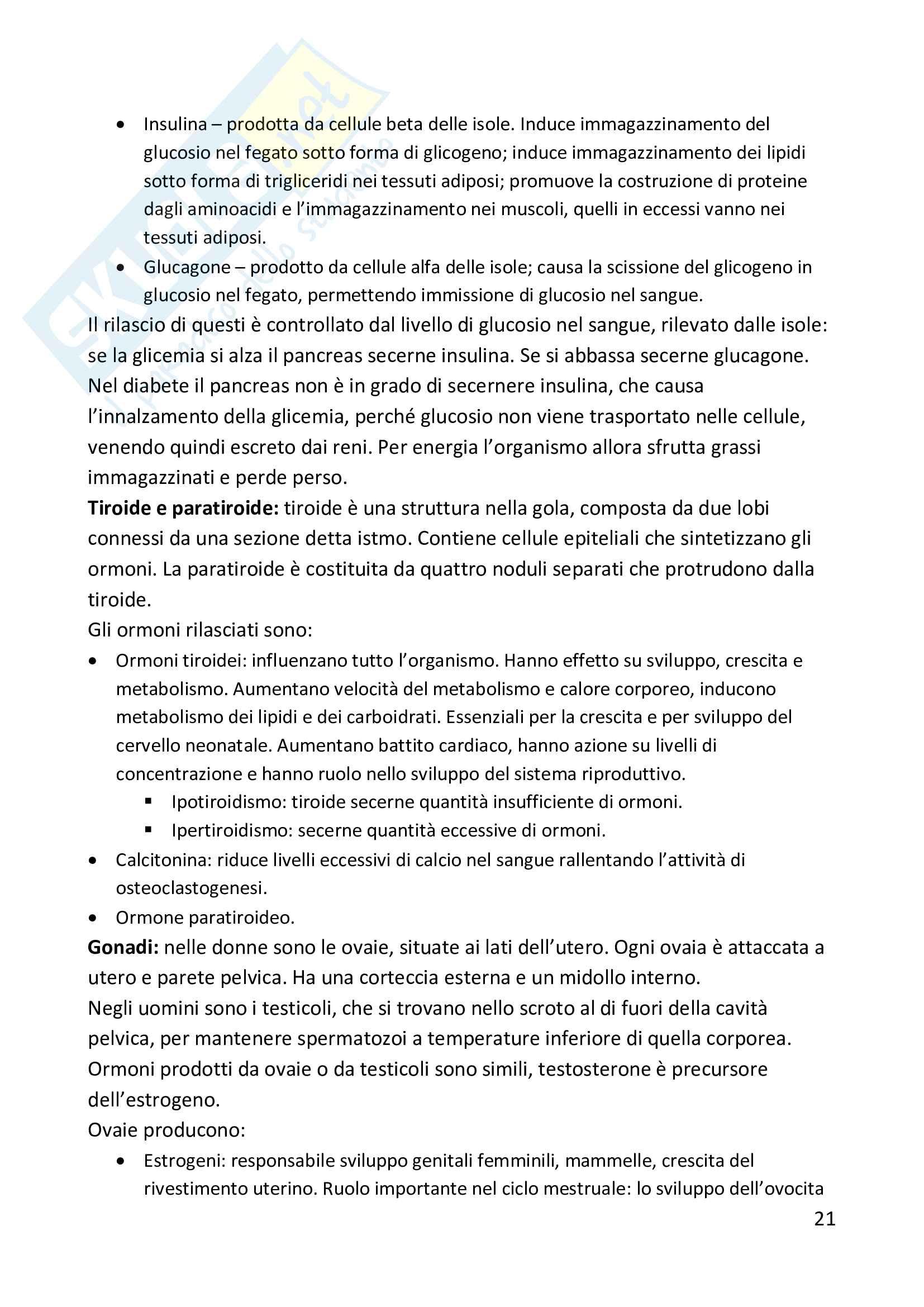 Riassunto esame psicologia fisiologica, prof Cauda, libro Psicologia Fisiologica, Wagner, Silber Pag. 21