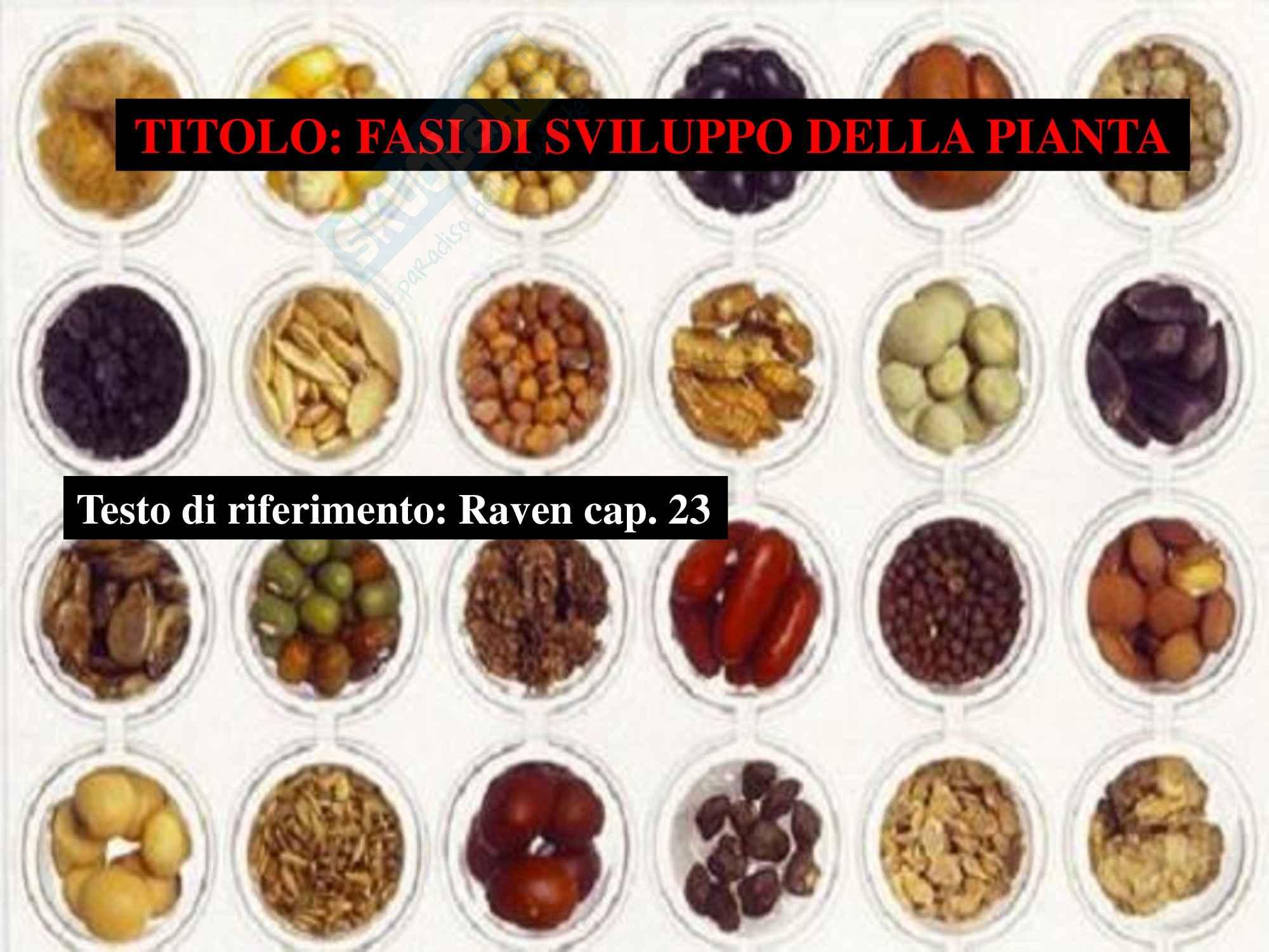 appunto M. Labra Biologia vegetale