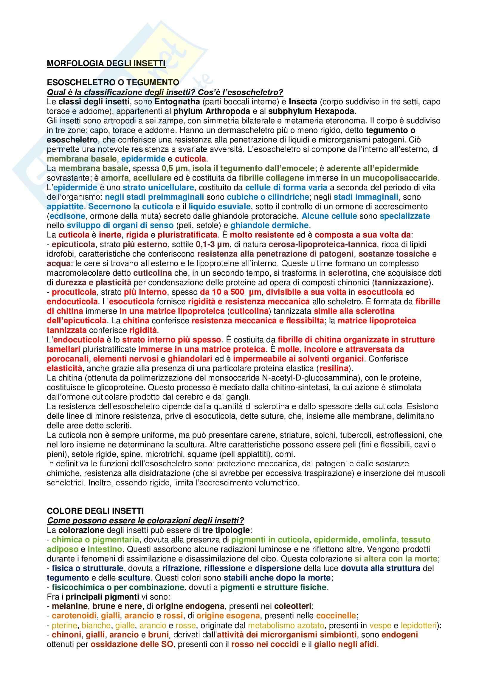 Riassunto esame Entomologia Agraria, prof. De Lillo