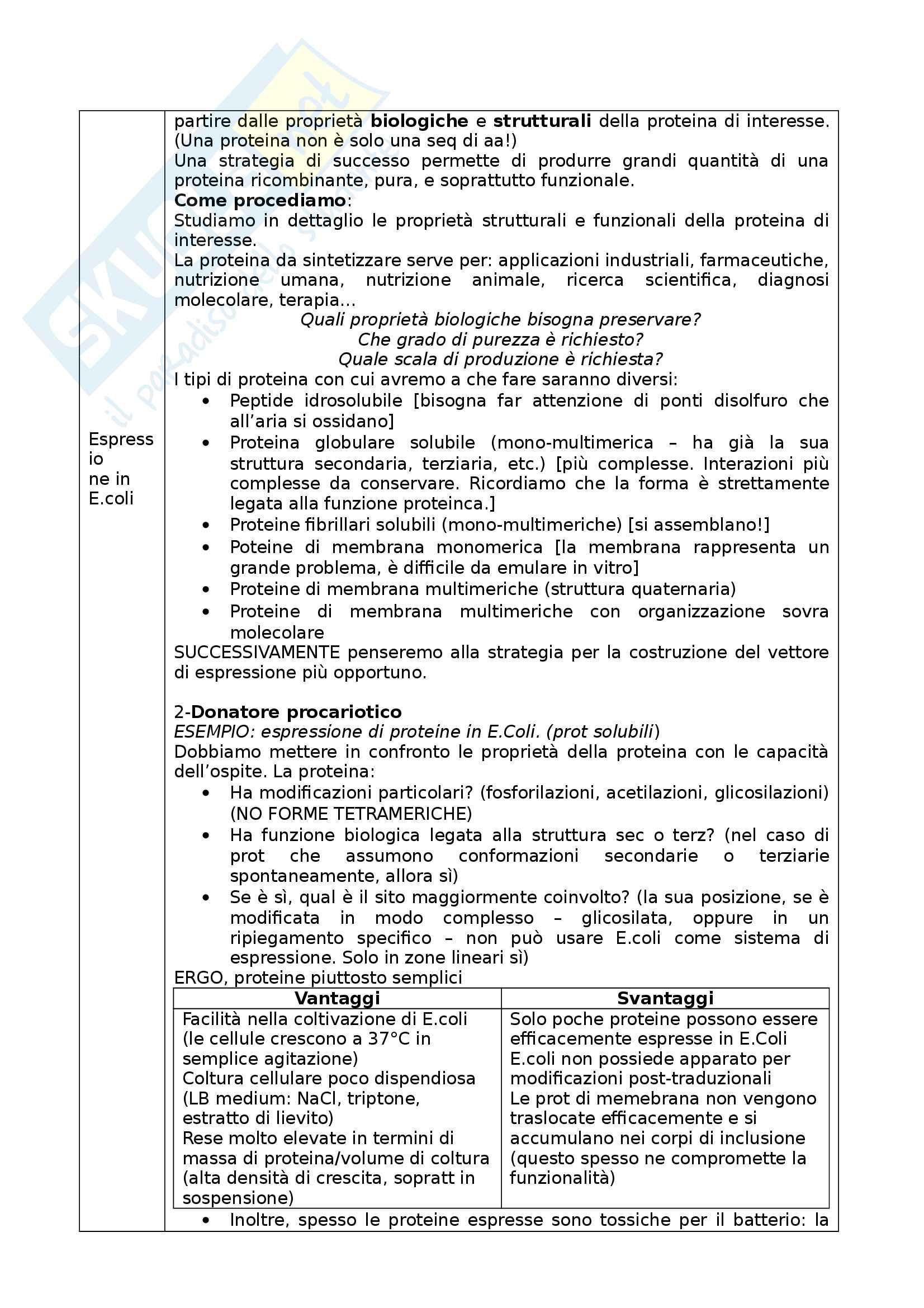 Ingegneria Cellulare Pag. 2
