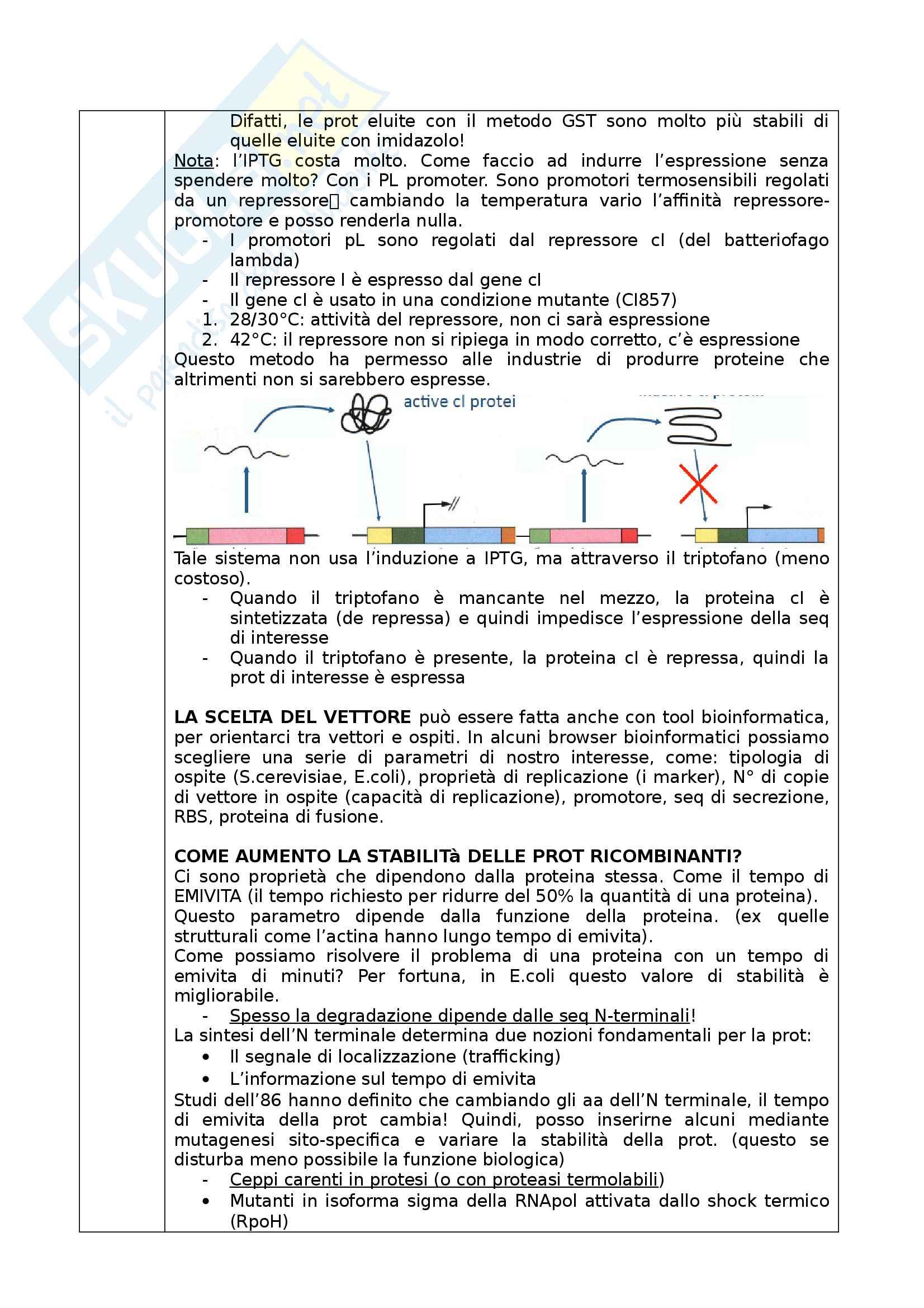 Ingegneria Cellulare Pag. 6