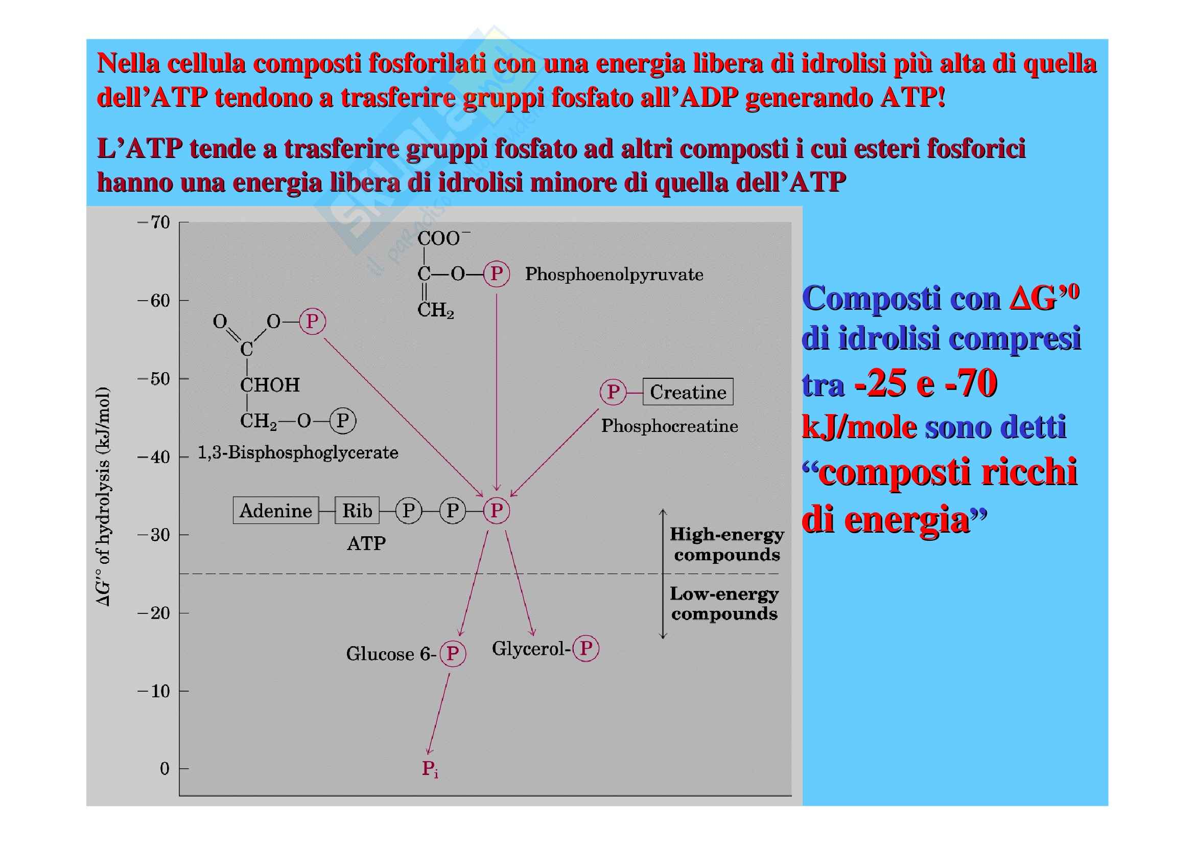 Biochimica II – Lezione 1 – Slides Pag. 76