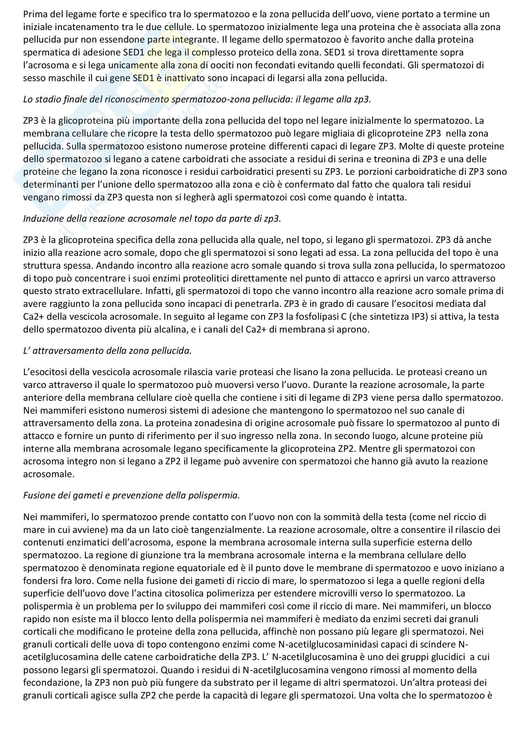Riassunto esame Biologia dello Sviluppo, prof. Moreno, libro consigliato Biologia dello Sviluppo di Gilbert Pag. 6