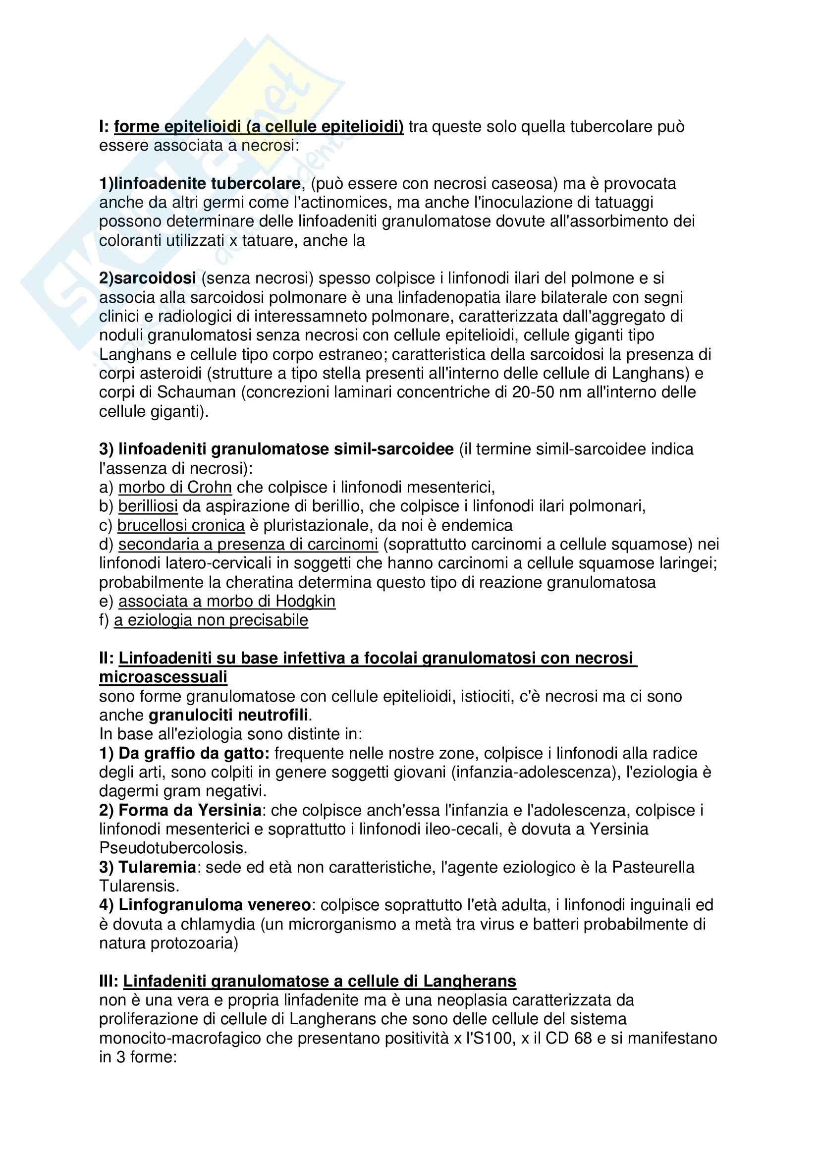 Anatomia patologica - iperplasia Pag. 6