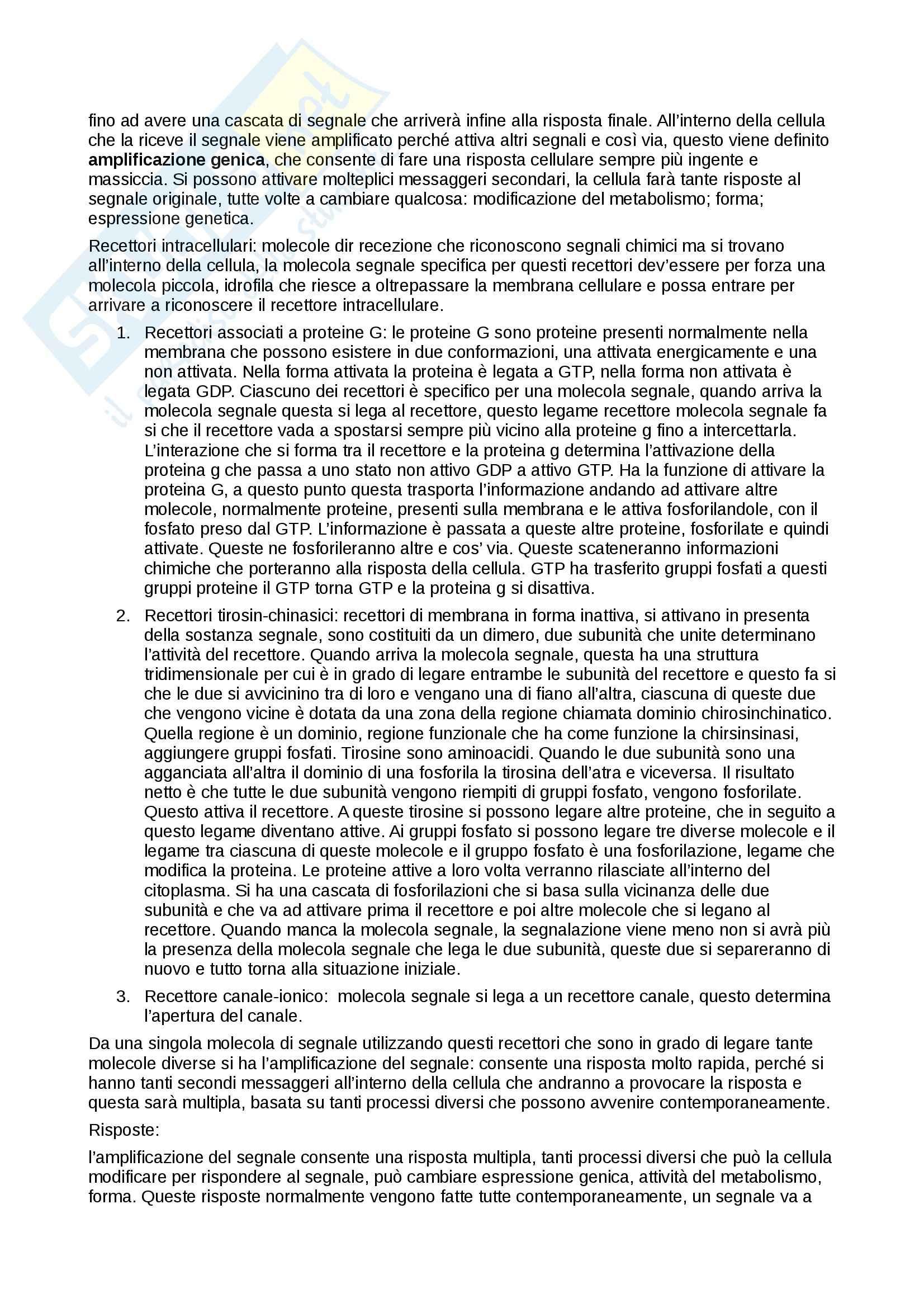 Riassunto esame Biologia e Genetica, prof. Combi, libro consigliato Elementi di Biologia, Solomon, Berg, Martin Pag. 26