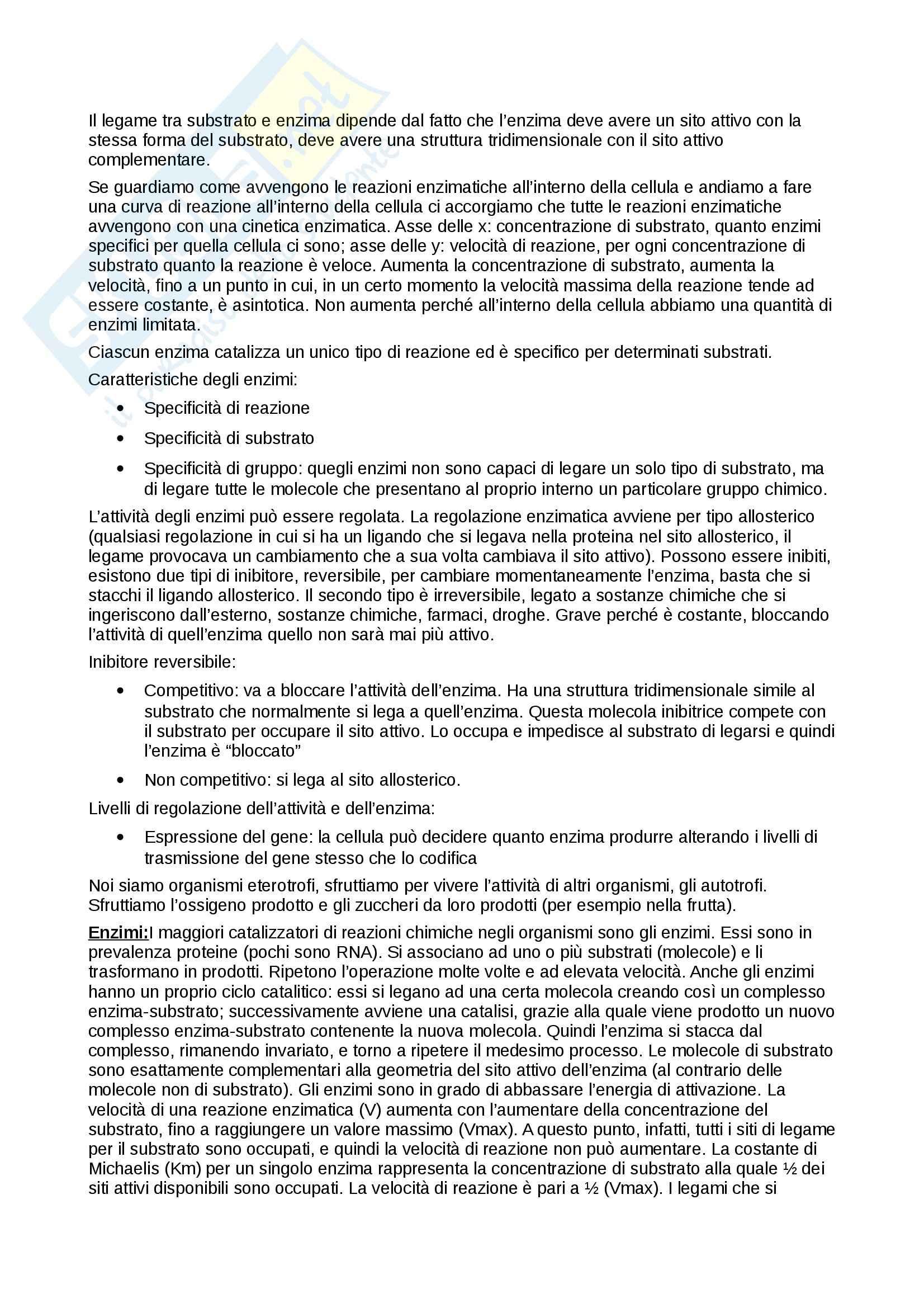 Riassunto esame Biologia e Genetica, prof. Combi, libro consigliato Elementi di Biologia, Solomon, Berg, Martin Pag. 31