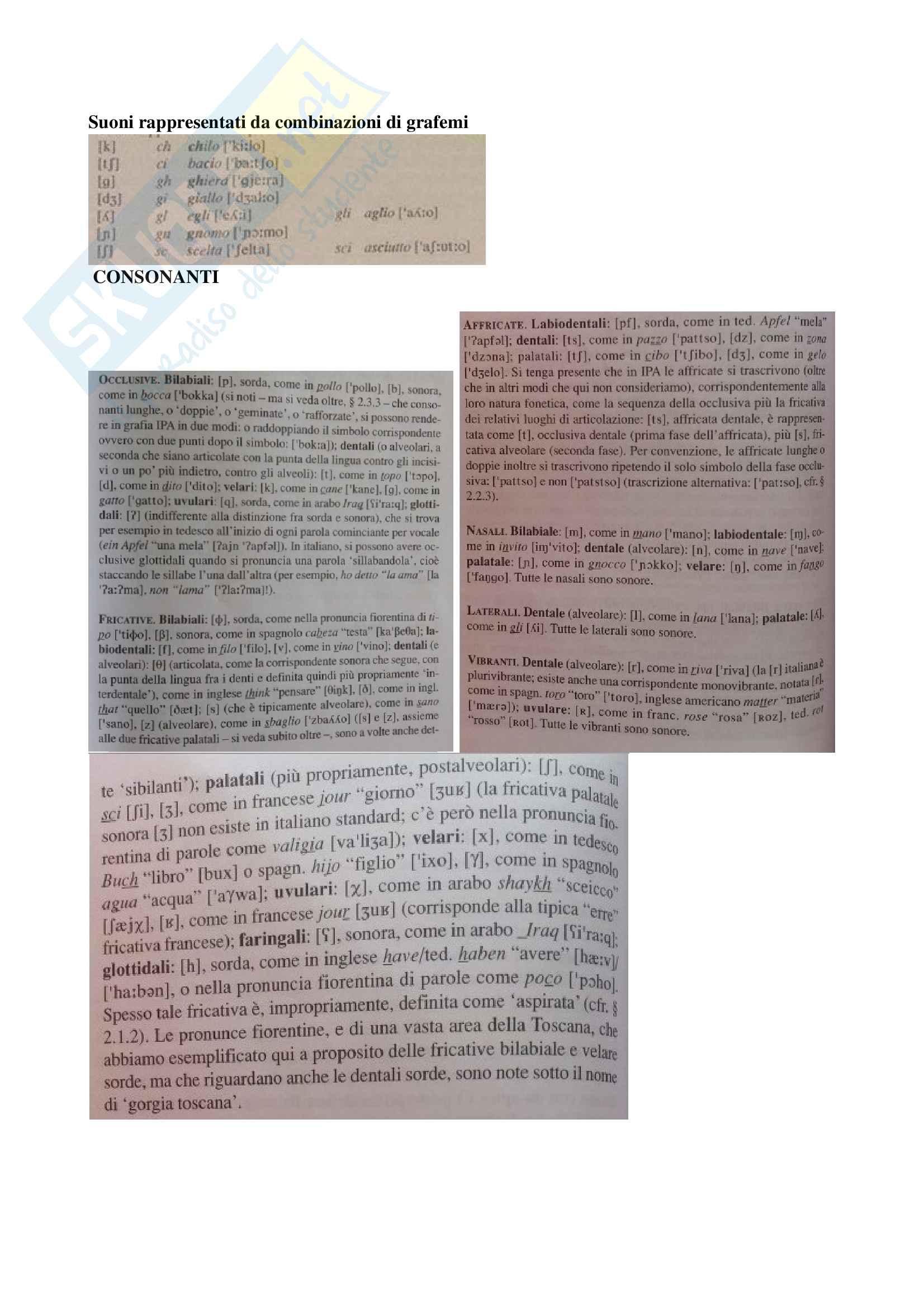 """Riassunto esame Linguistica Generale, prof Benvenuto, libro consigliato: La linguistica. Un corso introduttivo"""", Berruto, Cerruti, 2017 Pag. 26"""