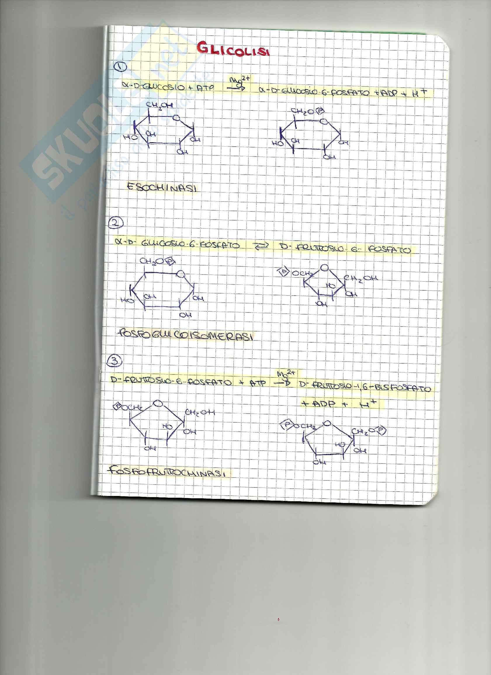 Formule biochimica