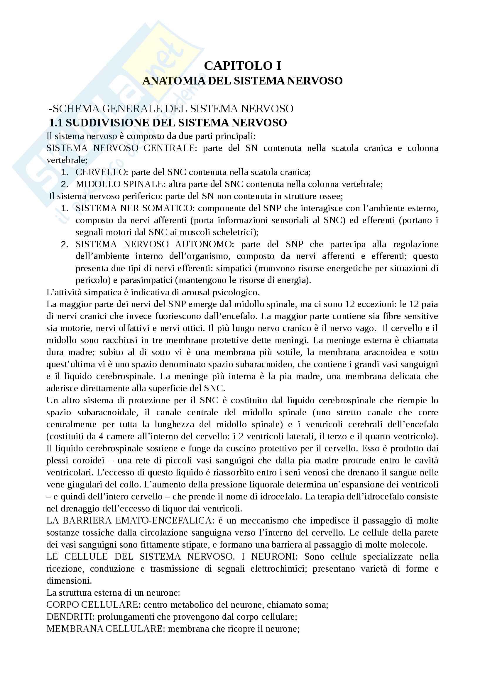 """Riassunto esame Psicobiologia del linguaggio, docente Falzone, libro consigliato manuale """"Psicobiologia"""", J.P.J Pinel"""